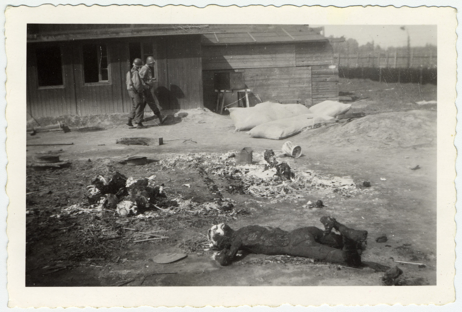American soldiers walk past corpses and skeletons lying on the grounds of Leipzig-Thekla.