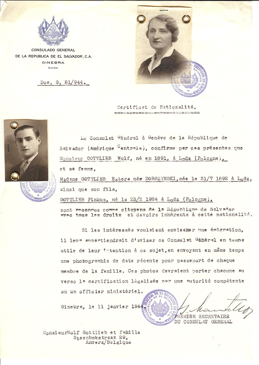 Unauthorized Salvadoran citizenship certificate issued to Wolf Gottlieb (b. 1891 in Lodz), his wife Estera (nee Dobrzynski) Gottlieb (b. July 31, 1892 in Lodz) and their son Pinkus Gottlieb (b. February 23, 1924 in Lodz) by George Mandel-Mantello, First Secretary of the Salvadoran Consulate in Switzerland and sent to their residence in Antwerp.
