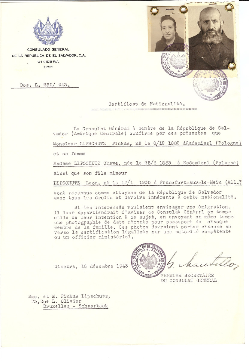 Unauthorized Salvadoran citizenship certificate issued to Pinkas Lipschutz (b. December 8, 1882 in Rademiszl), his wife Chawa (b. June 25, 1883 in Rademiszl) and their son Leon (b. January 17, 1930 in Frankfurt) by George Mandel-Mantello, First Secretary of the Salvadoran Consulate in Switzerland and sent to their residence in Brussels.