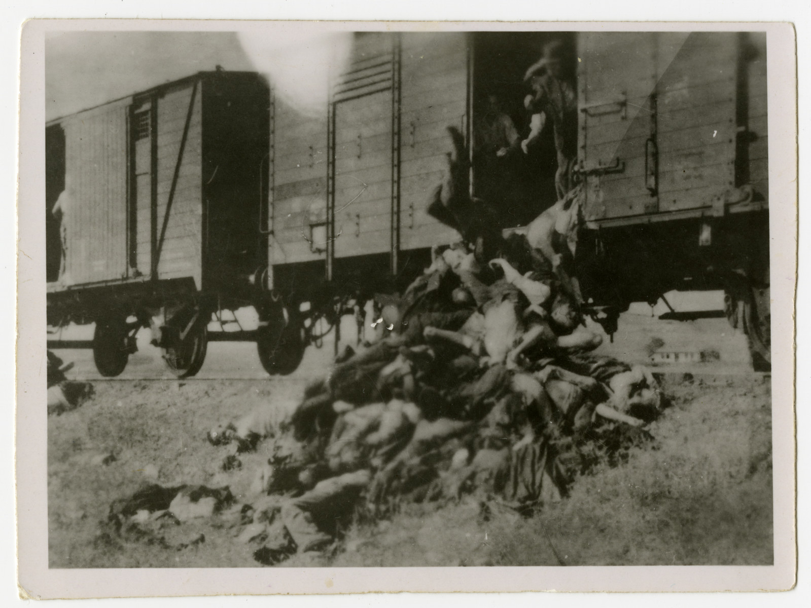 Corpses are tossed from the train during a stop in Podu Iloaiei.