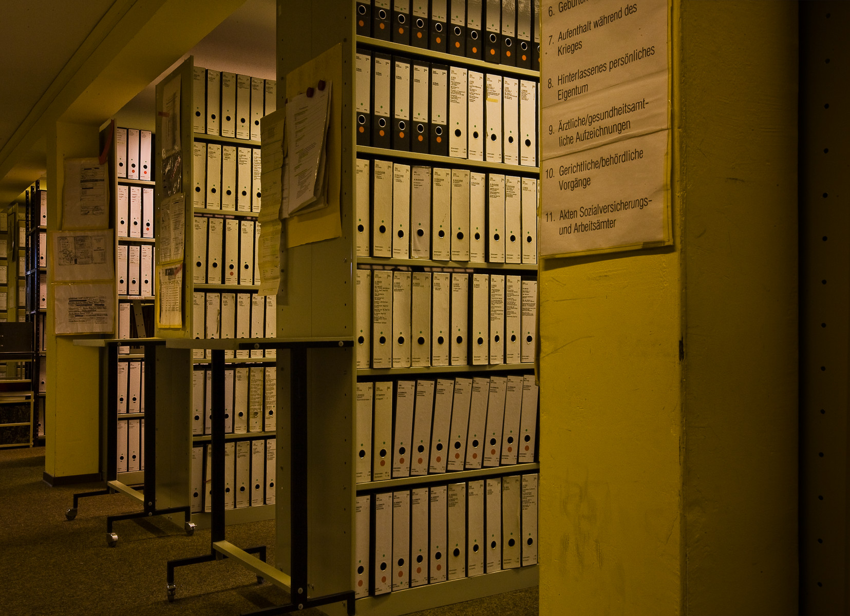 View of four bookshelves containing I.T.S. boxed files.