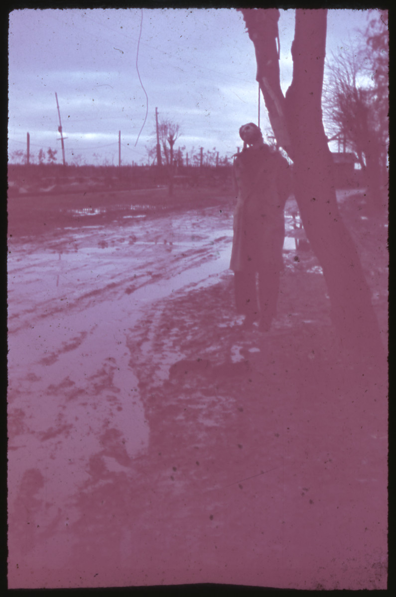 Color slide of a man hanging by the side of a road [probably in the Soviet Union].
