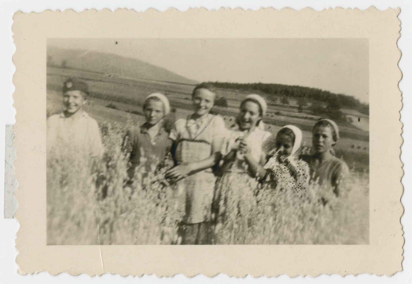 The Gruenberg sisters stand in a field with friends.  From left to right are a friend, Malka, Lenke, Bluma and two more friends.