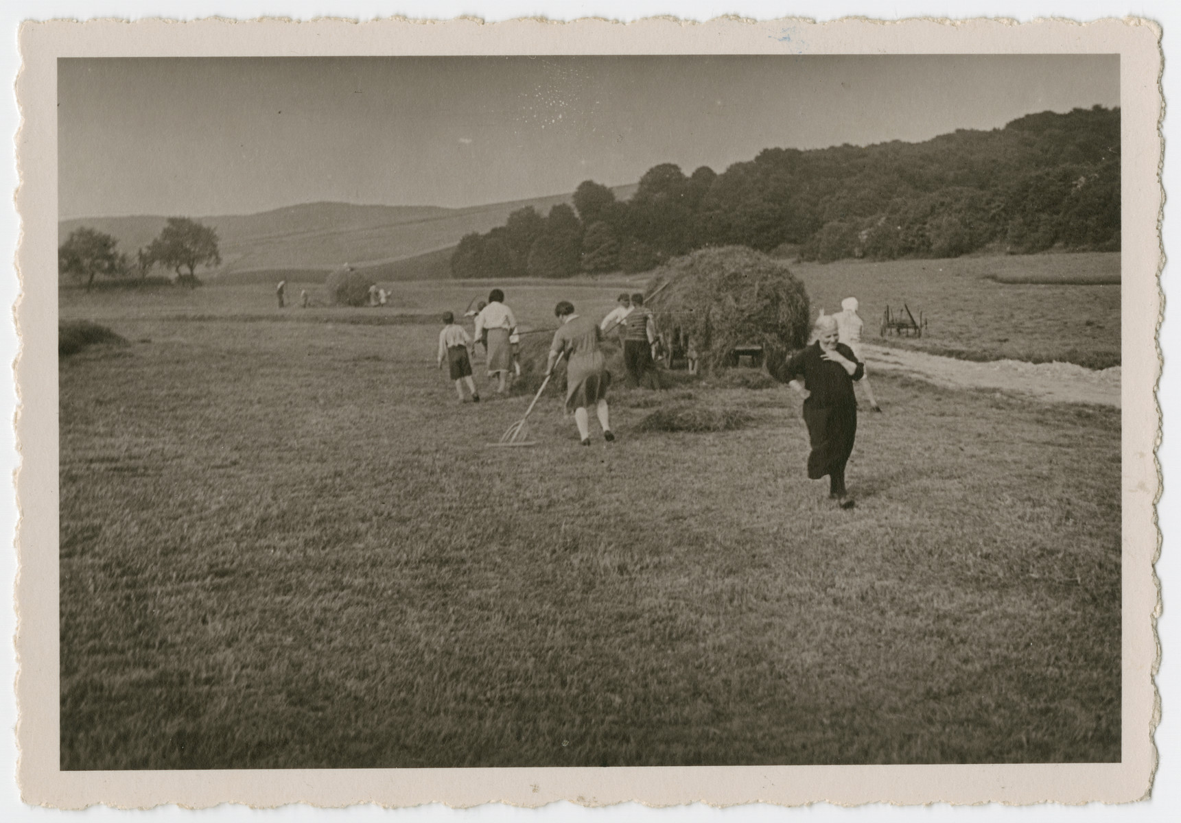 Photograph of extended Isenberg family harvesting hay.   Pictured are: Erna Isenberg (in skirt), Rosa Isenberg (raking), Julie Isenberg (foreground, black dress), and Sigmund Isenberg (with cap next to hay cart).