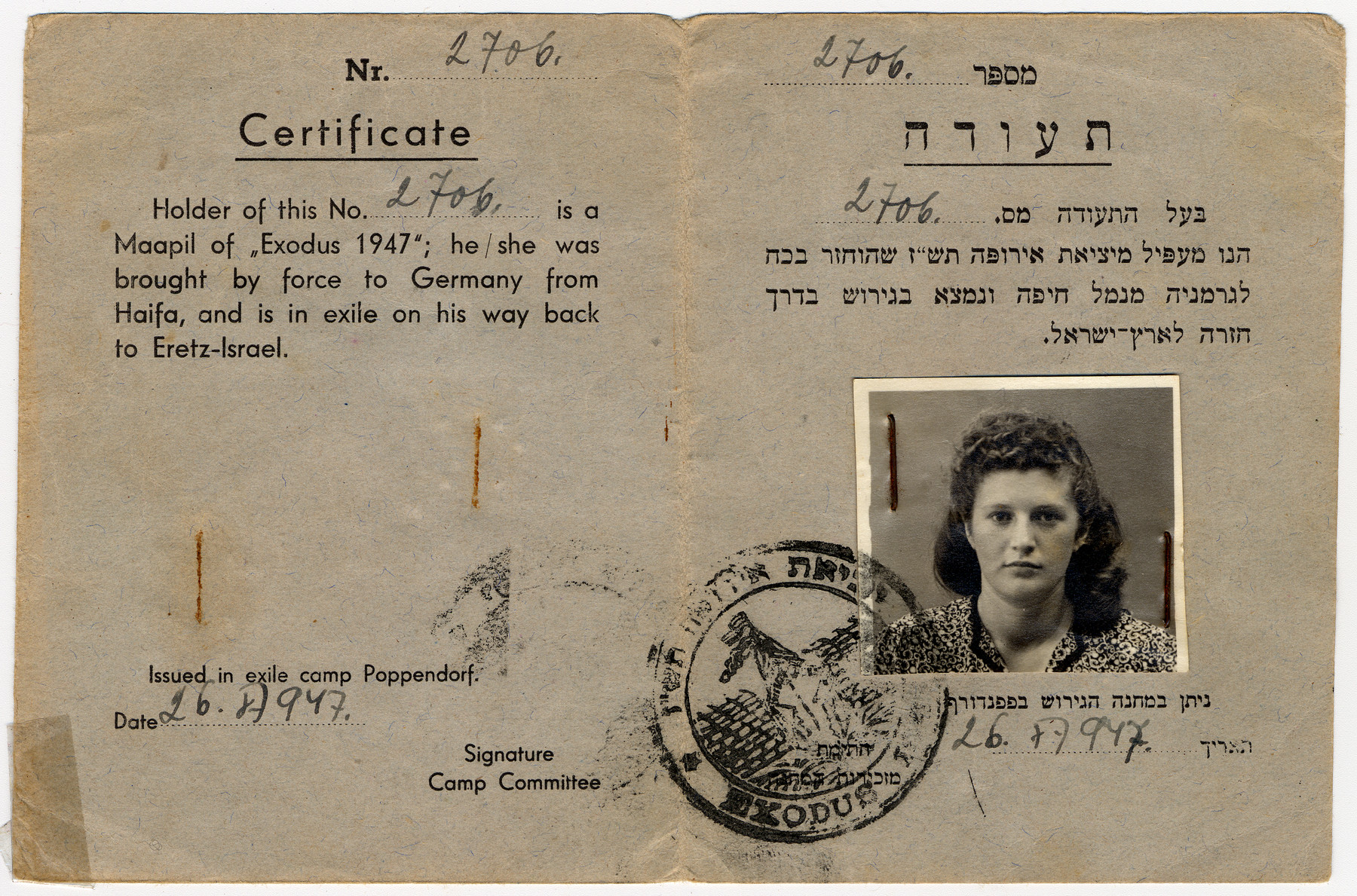"""Exodus certificate issued to Sara Wiener in the Poppendorf displaced persons' camp.  The text inside reads """"Holder of this No. is a Maapil of """"Exodus 1947""""; he/she was brought by force to Germany from Haifa, and is in exile on his way back to Eretz-Israel""""."""