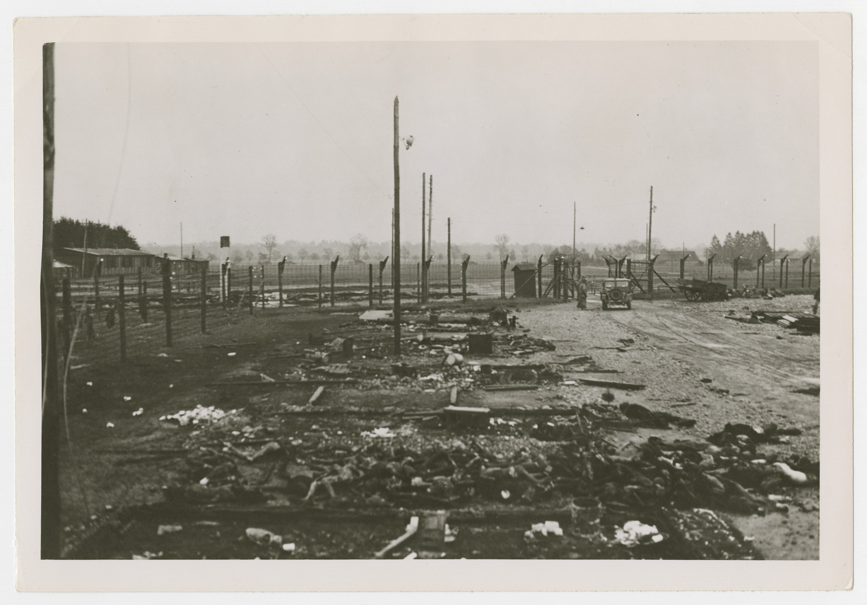 "Charred corpses lie on the ground of the Landsberg concentration camp.  The original Signal Corps caption reads, ""The emaciated bodies of victims of German cruelty at the Landsberg prison.  Before retreating in the face of the 7th Army attack the Jewish prisoners were locked in their huts and told they would be shot if they came out.  Then the buildings were set on fire.  Some burned to death in their huts, others found strength enough to break down the door and crawl out to die in the streets.  Most prisoners were naked, some had remnants of clothing on their charred bodies.  Long lines of charred huts with the remains of the victims lying in the ashes."""