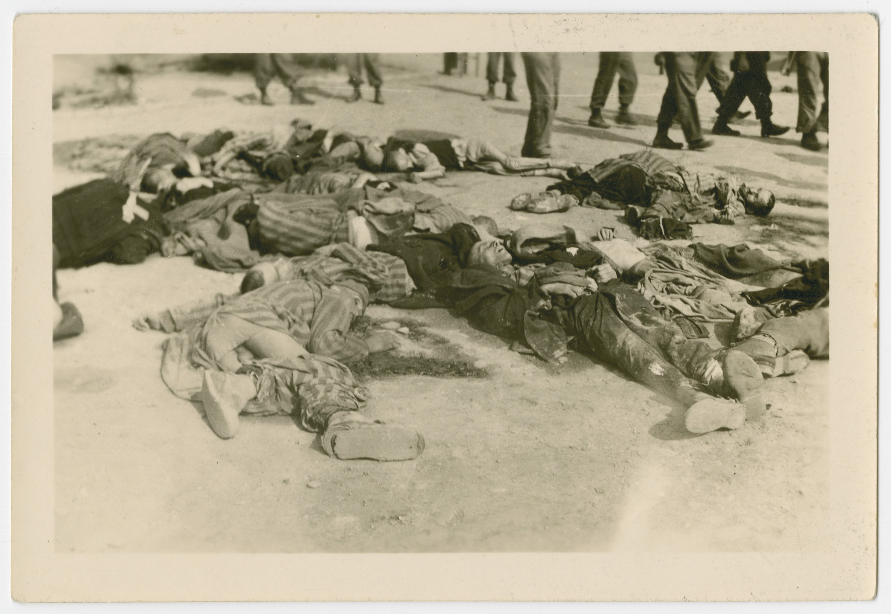 Corpses of concentration camp prisoners photographed after the American liberation of Ohrdruf.