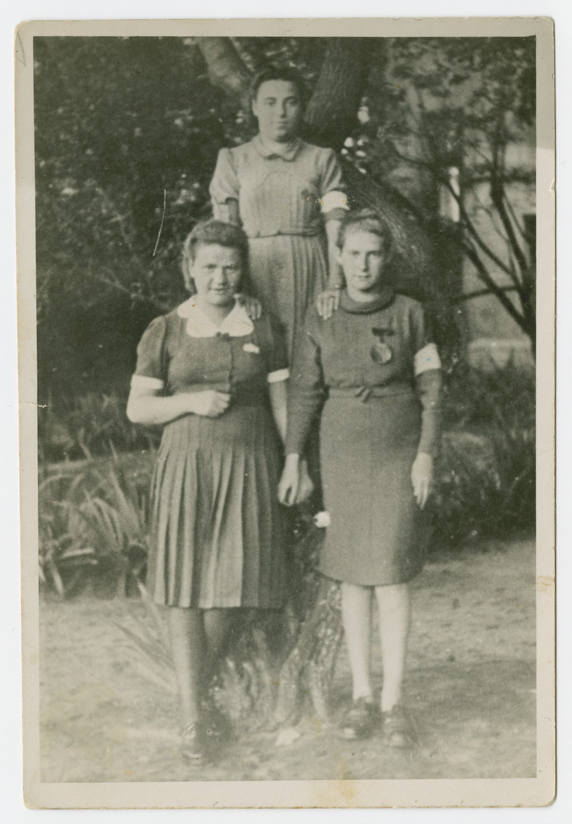 Three young women wearing armbands pose by a tree in the Bedzin ghetto.  Pictured clockwise from the top are, Pola Golanzer, Sara Kirchenbaum and Chaje Feffer.