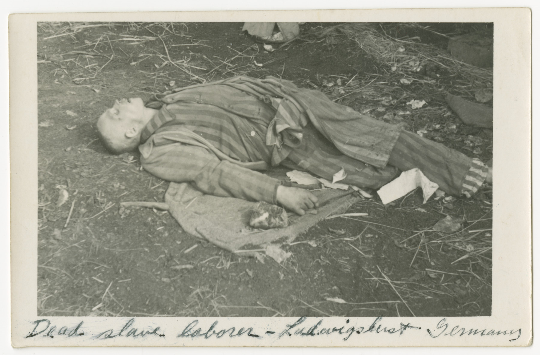 "Close-up of a corpse lying on the grounds of the Woebbelin concentration camp.  The photograph's original caption reads, ""Dead slave laborer - Ludwigslust, Germany"""