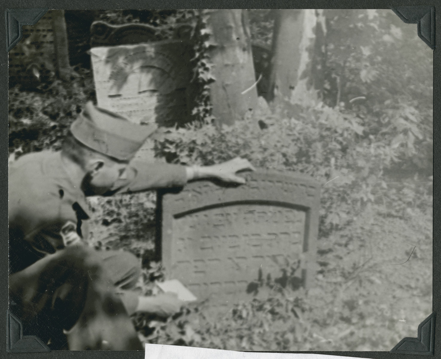 Eliezer Dembitz, a member of the Frankfurt Jewish GI Council, examines an old Jewish tombstone in Frankfurt.