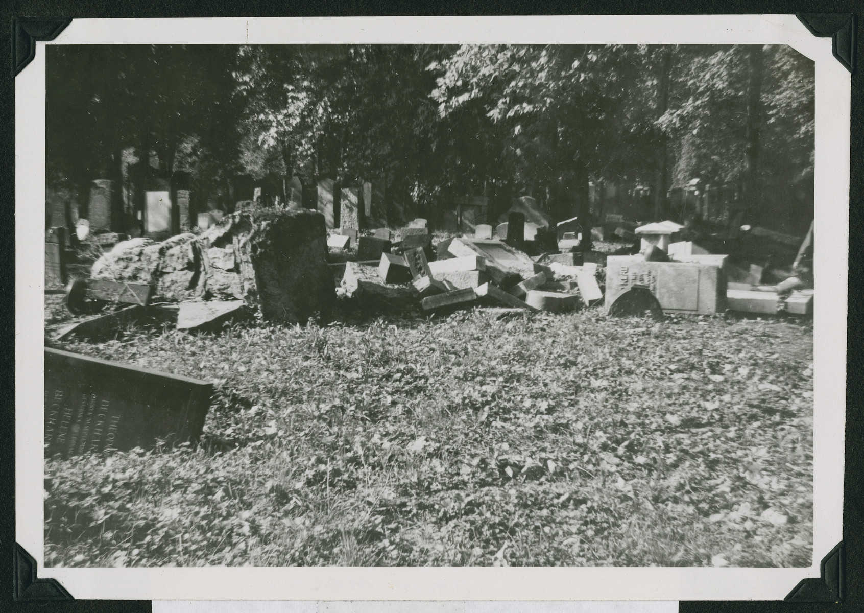 View of the desecrated Jewish cemetery in Frankfurt.