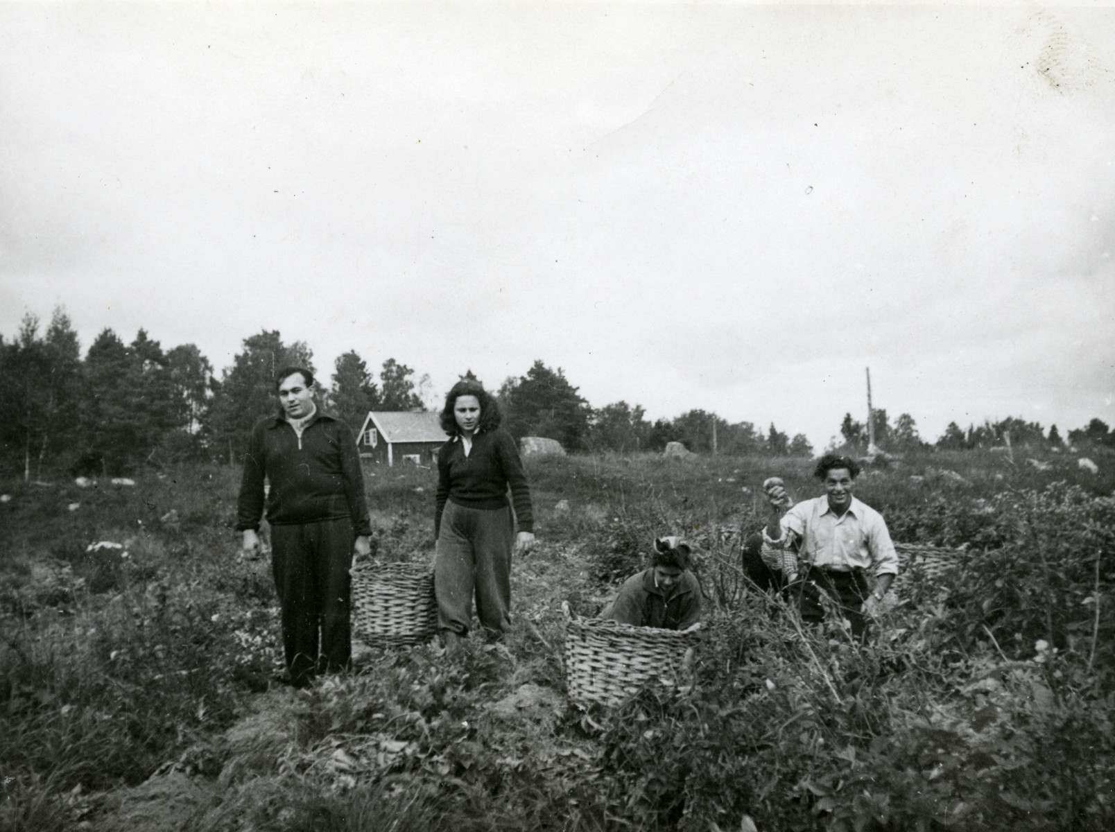 Abraham Kischinovsky (far right) and a group of friends goes berry picking in wartime Sweden.