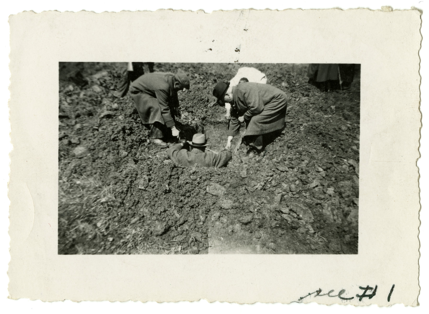 Three German civilians prepare to lift a body out of a grave for later reburial.