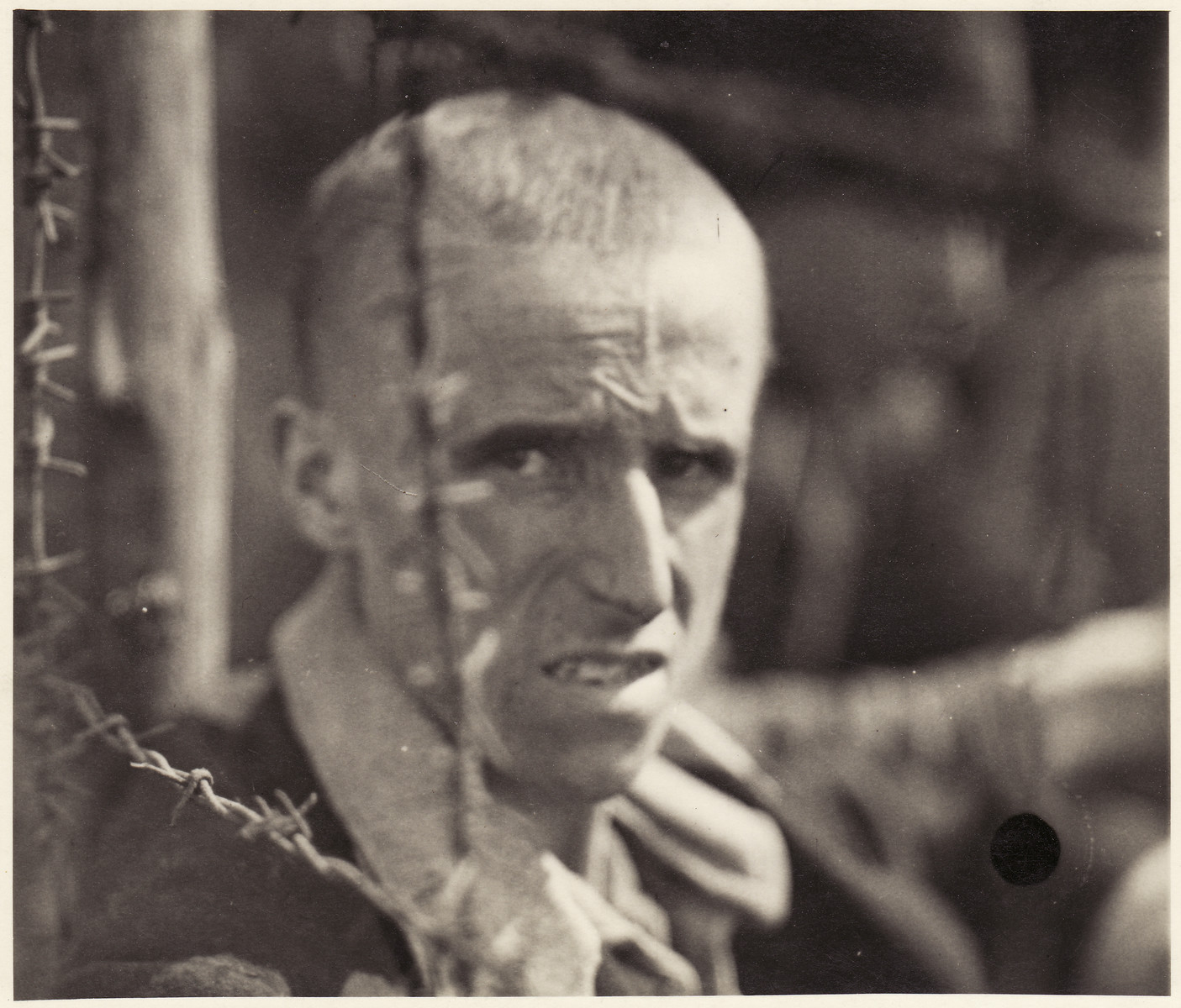 A survivor of Bergen-Belsen concentration camp looks through a barbed wire fence.