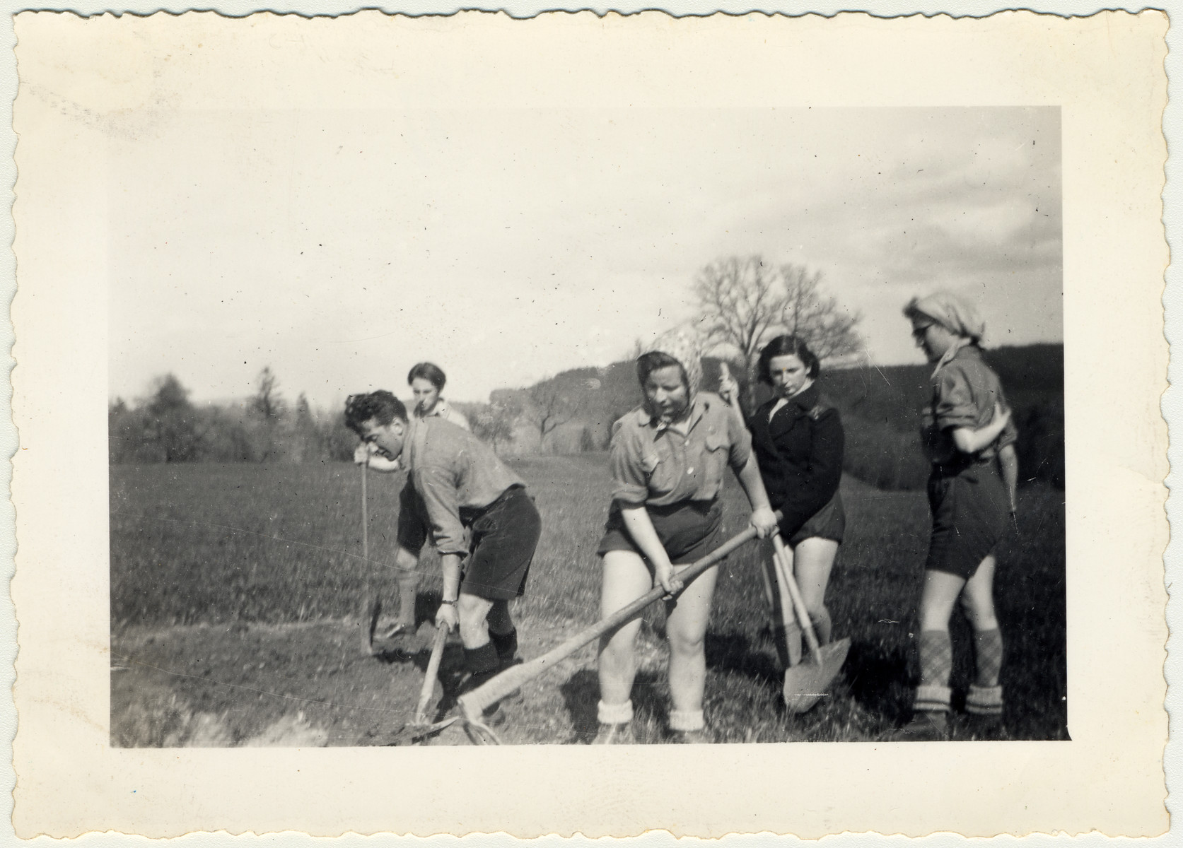 Joseph Protter, Regina Gelbart, Rudi, Minni, and Sitta, members of a Zionist youth movement, work in the fields.