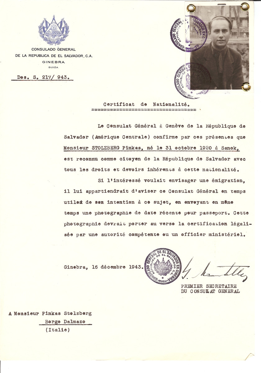 Unauthorized Salvadoran citizenship certificate issued to Pinkas Stolzberg (b. October 31, 1920 in Sanok) by George Mandel-Mantello, First Secretary of the Salvadoran Consulate in Switzerland and sent to him in Italy.