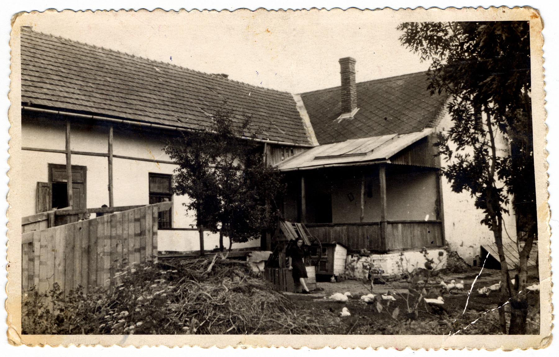 Malvina Grunfeld visits her family's former home in Trebisov after the war.  She worked there for a few months after the war but never was able to regain the home.  The porch had a retractable roof that also served as a sukkah.