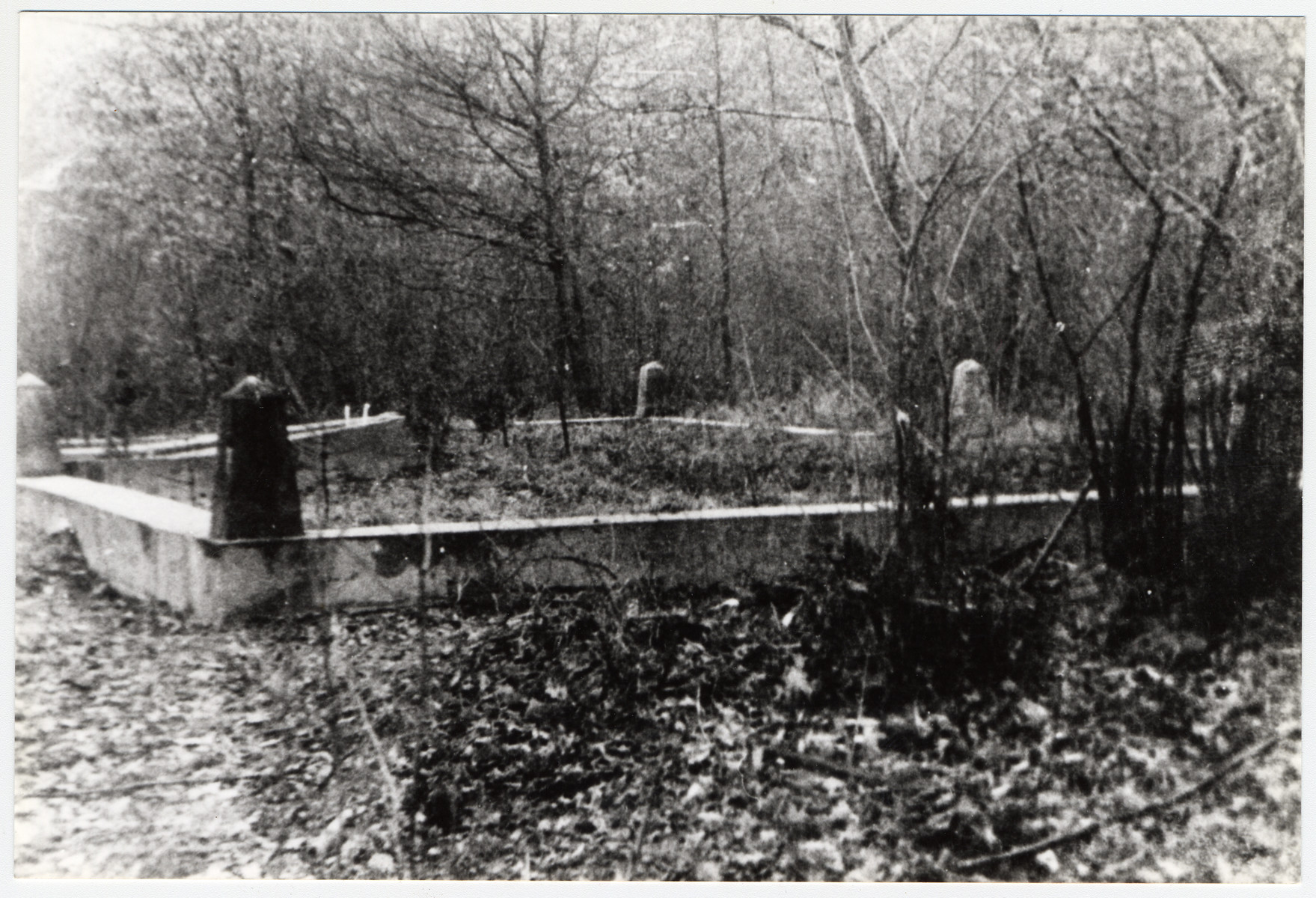 View of the execution site where Jews from Bolechow were murdered and buried during an Aktion in 1941.