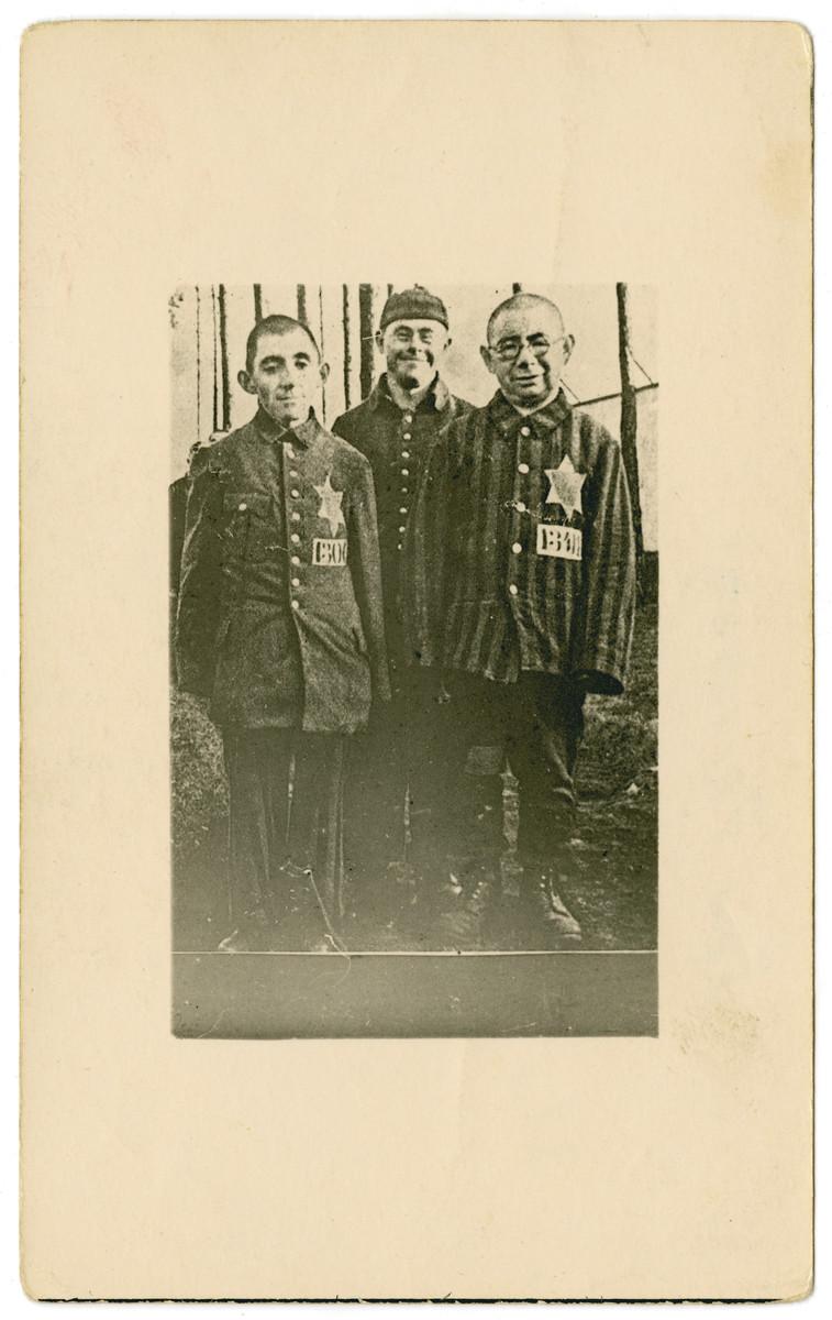 Close-up portrait of three Jewish survivors of the Dachau concentration camp.