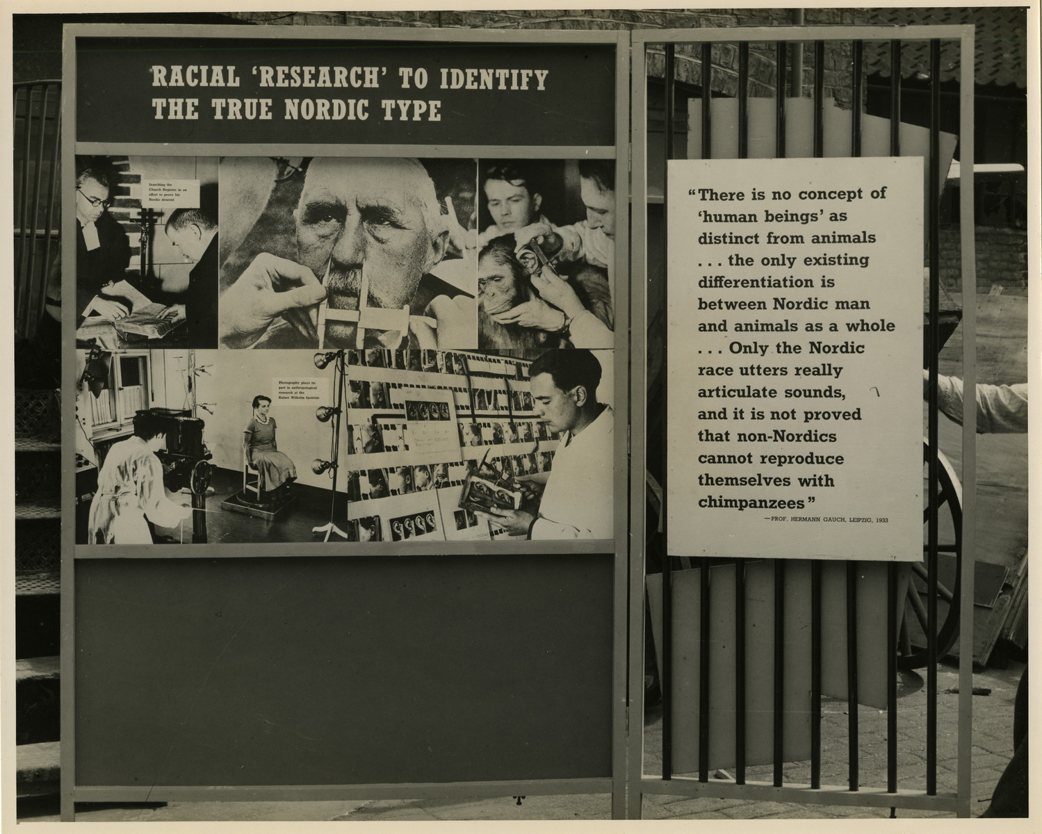 "Panel from a 1944 exhibition in London, England, entitled ""Germany- the Evidence"" showing German racial research on the Nordic Race.   The panel shows German research on the Nordic Race titled ""Racial 'Research' To Identify The True Nordic Type"". The quotation next to the large panel reads ""There is no concept of 'human beings' as distinct from animals... the only existing differentiation is between Nordic man and animals as a whole... Only the Nordic race utters really articulate sounds, and it is not proved that non- Noridcs cannot reproduce themselves with chimpanzees.""   The back of the photo reads ""British Official Photograph; Distrbuted by the Ministry of Information. D. ; The Evil We Fight.; Ministry of Information Exhibition priduced by Display &Exhibitions Division for show all over Great Britain.; Display panel"""