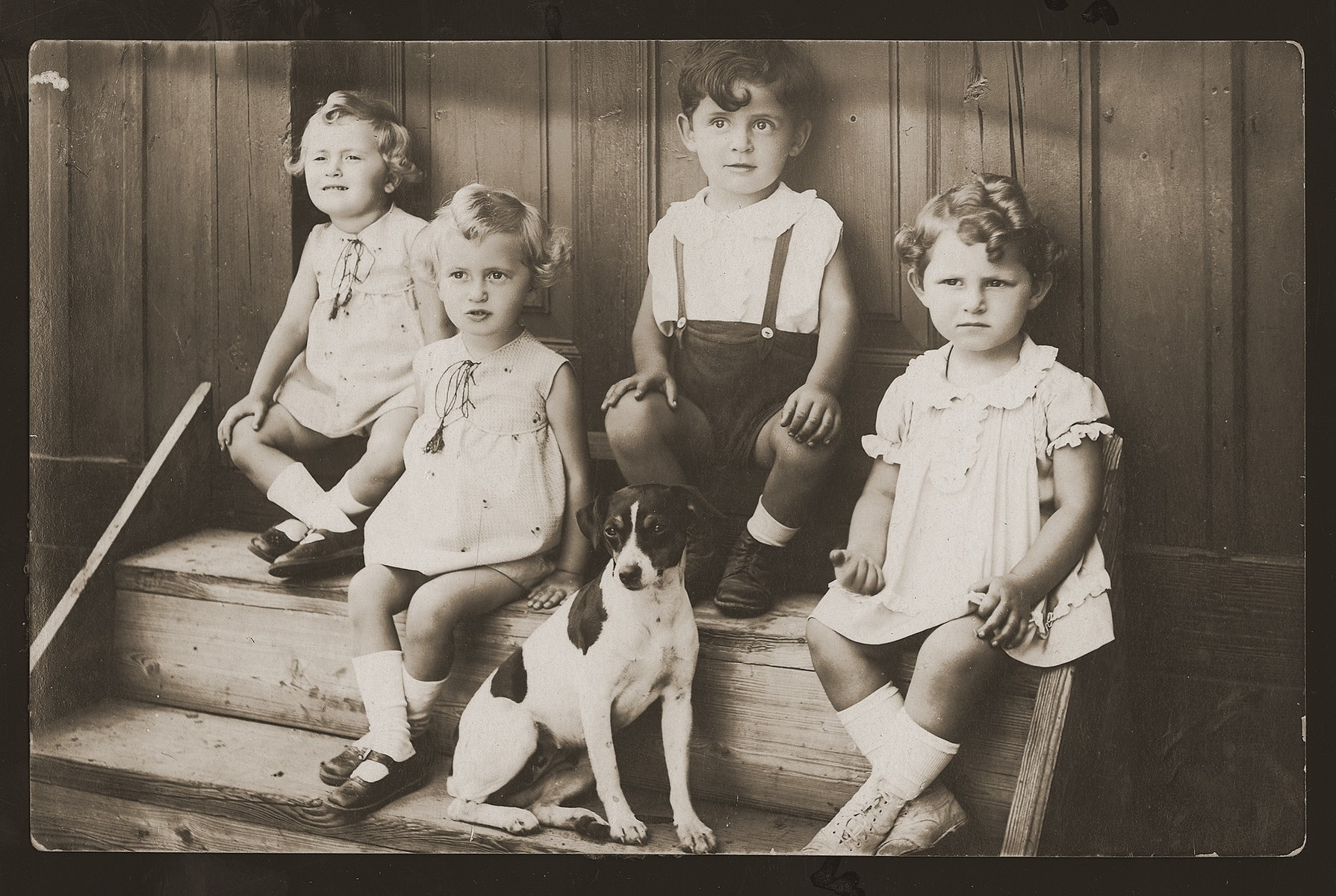 Four young Jewish children sit on the steps to a house with their dog.  Pictured are Rozia and Jadzia Goldfluss and Leopold and Blanka Wang.