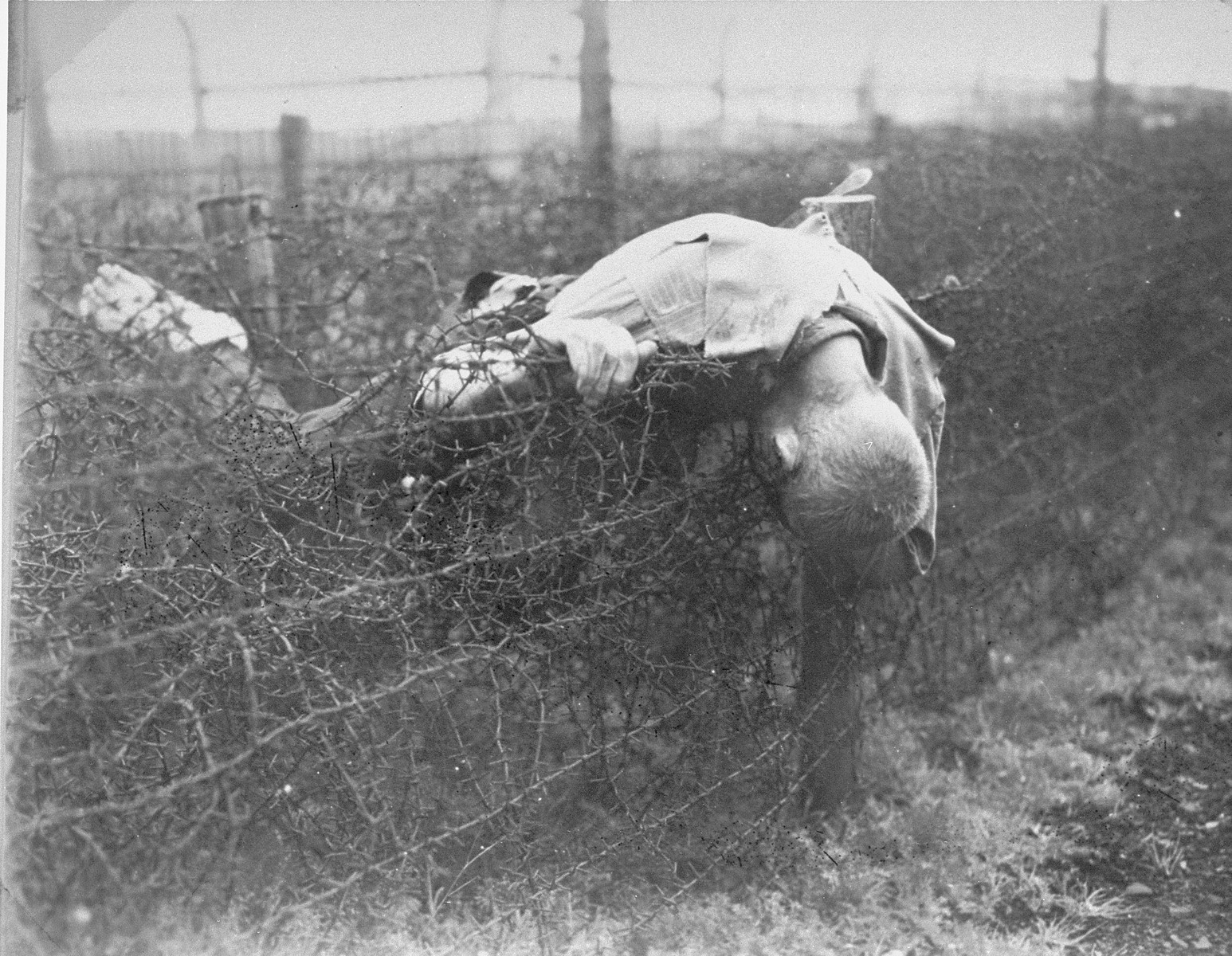 The corpse of a prisoner lies on the barbed wire fence in Leipzig-Thekla, a sub-camp of Buchenwald.