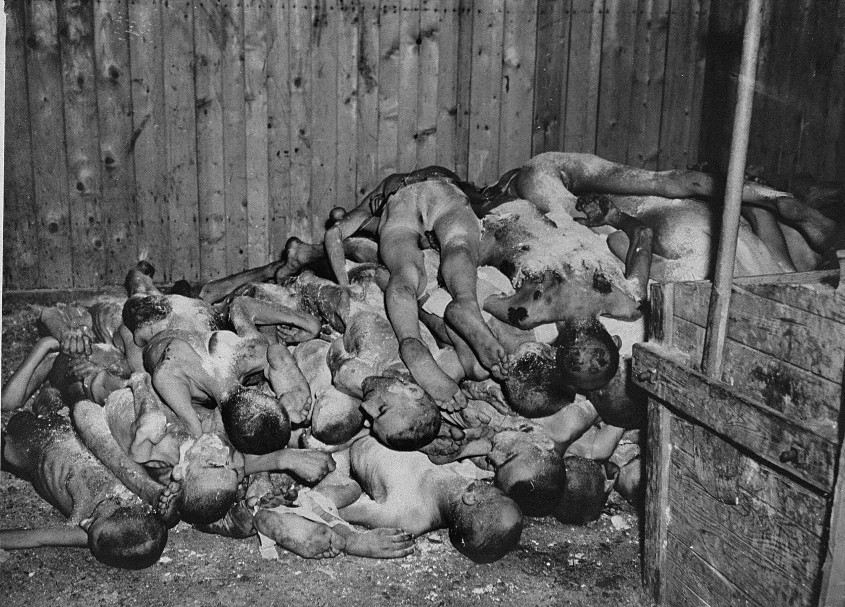 The bodies of prisoners lie stacked in a shed in the Ohrdruf concentration camp.