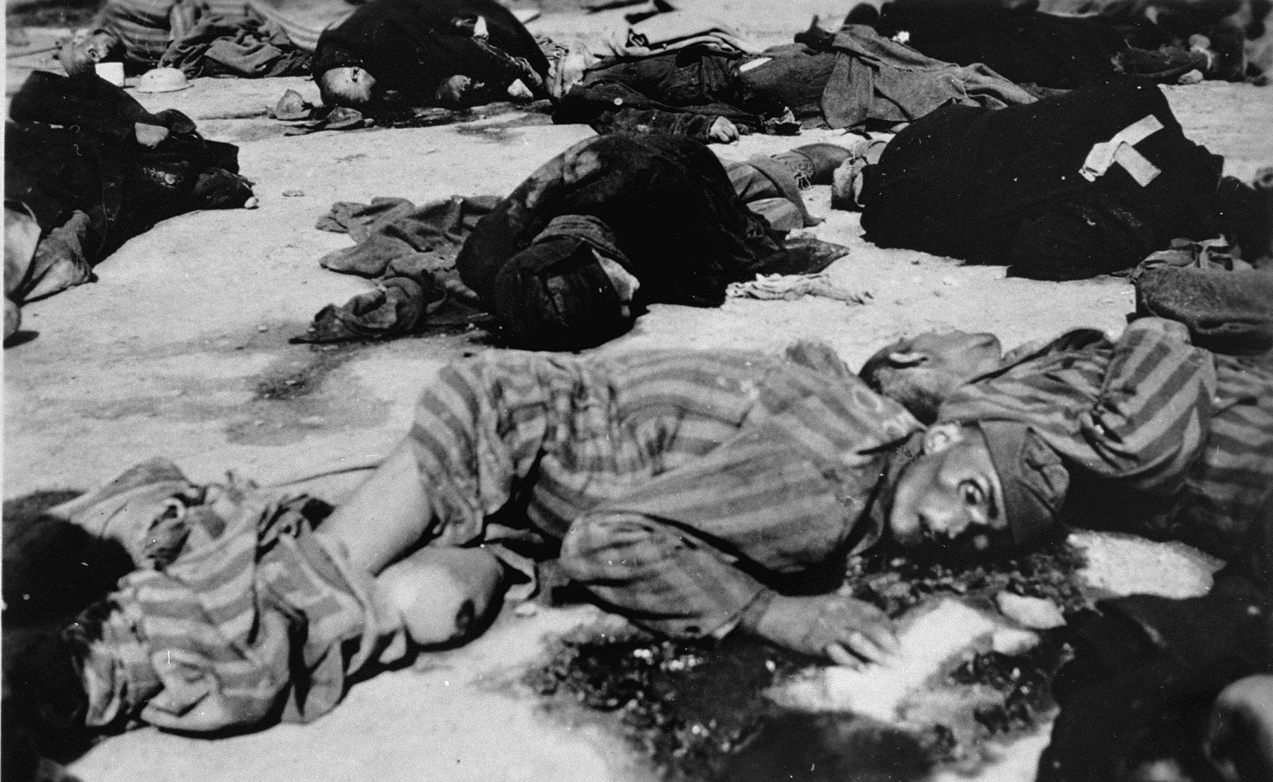 The corpses of prisoners executed by the SS during the evacuation of the camp.