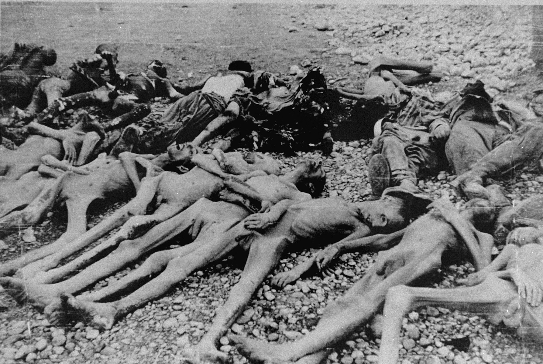 Corpses awaiting burial in Leipzig-Thekla, a sub-camp of Buchenwald.
