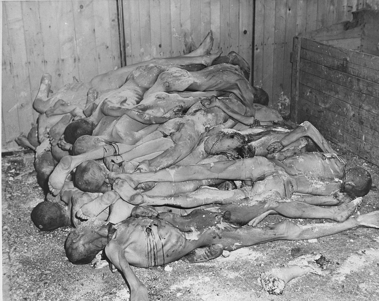 "The bodies of prisoners lie stacked in a shed in the Ohrdruf concentration camp.    The original caption reads ""These emaciated, nude corpses, stacked like cord-wood in a bin at the concentration camp at Goth, Germany, tell their own story of the sadism and brutality of the Nazi gaolers.  They are strewn with quicklime in a haphazard attempt to destroy evidence of the crimes.  General Dwight D. Eisenhower, Supreme Allied Commander, viewed the Gotha horrors during a tour of the Third Army Front."""
