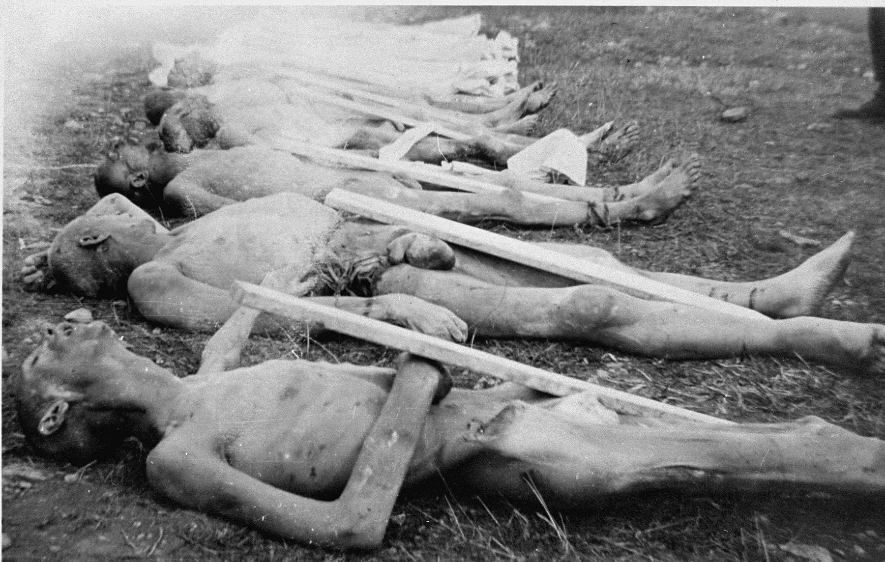 The corpses of prisoners killed in Ohrdruf awaiting burial.  Each corpse was assigned a numbered grave marker.