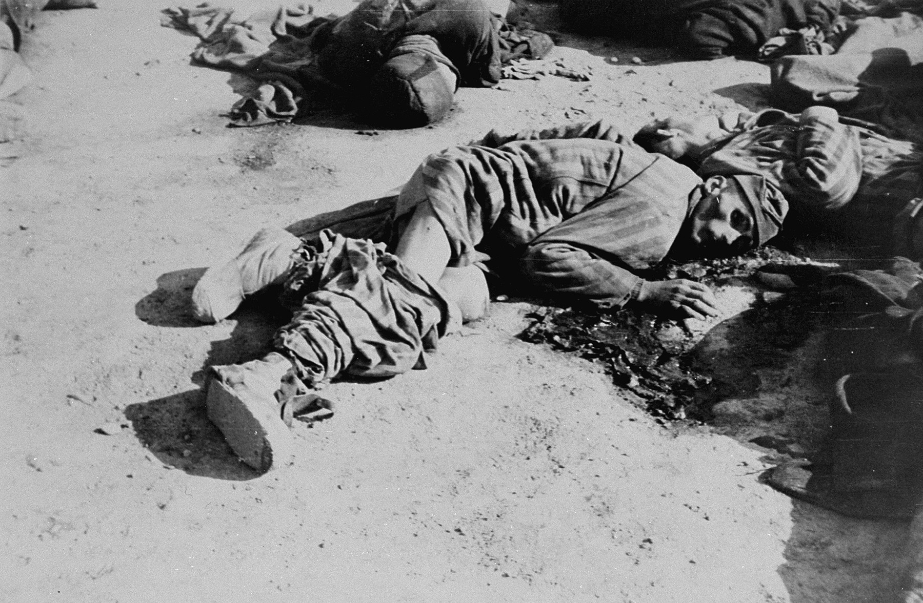 The corpses of prisoners executed by the SS during the evacuation of Ohrdruf.