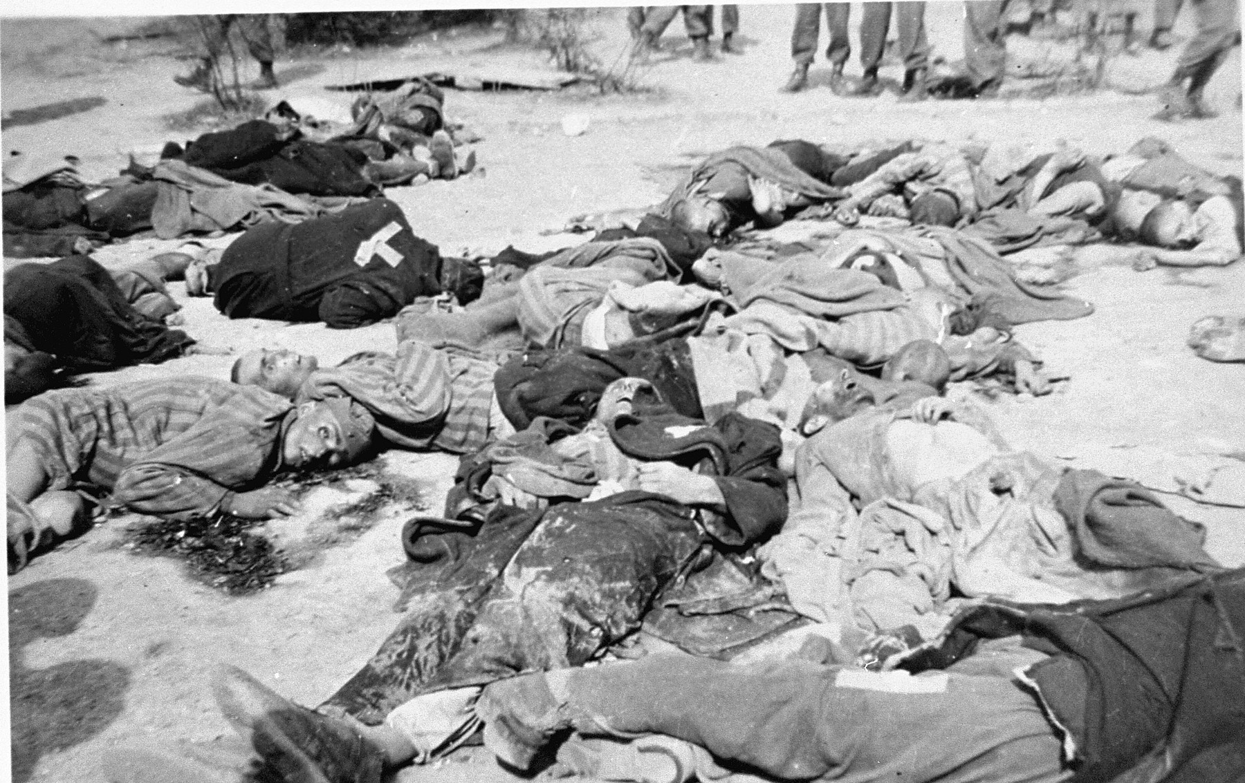 The corpses of prisoners who were machine-gunned by the SS prior to the evacuation of Ohrdruf.