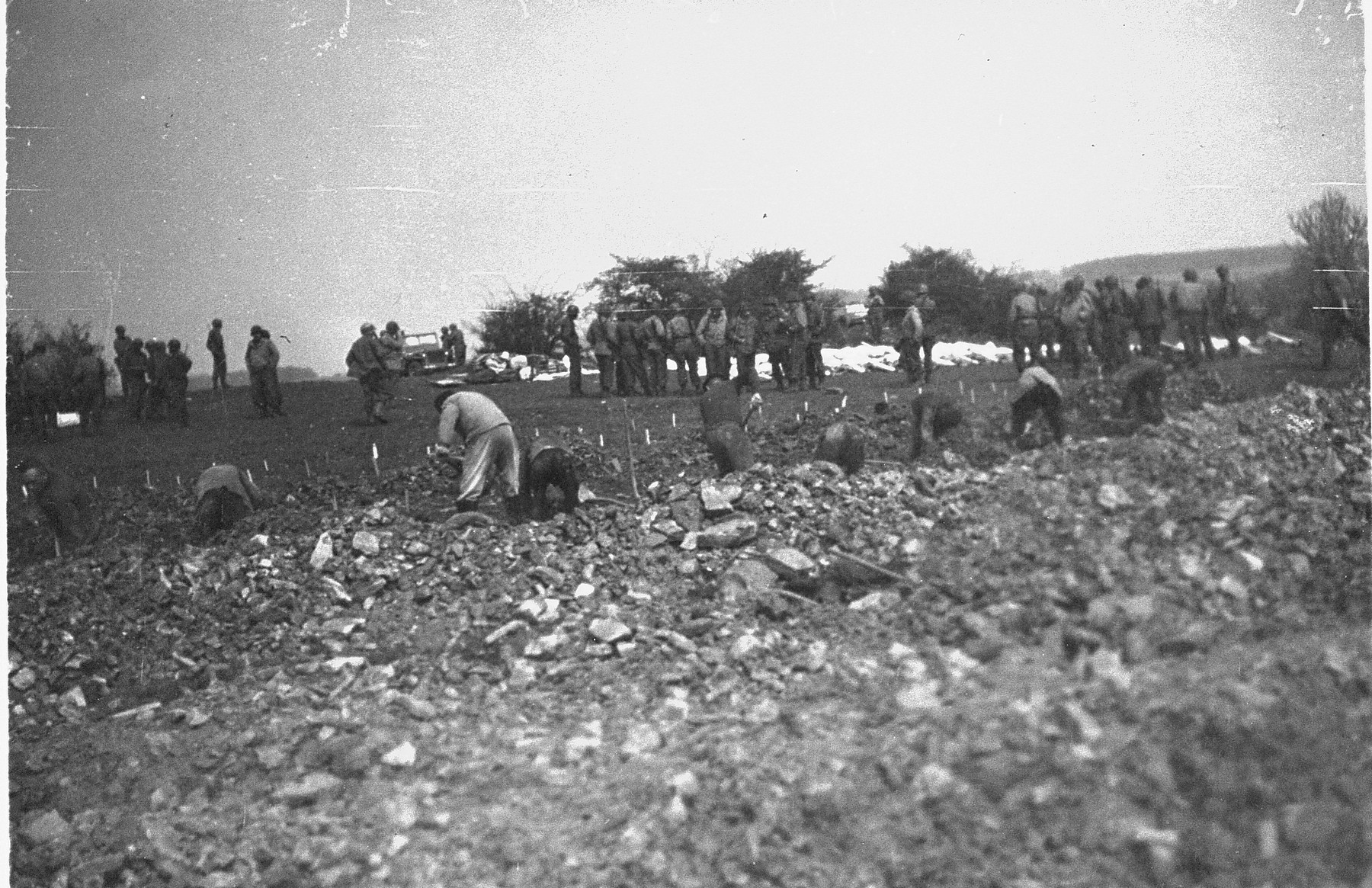 German civilians conscripted from nearby towns dig graves for prisoners killed in the Ohrdruf concentration camp.