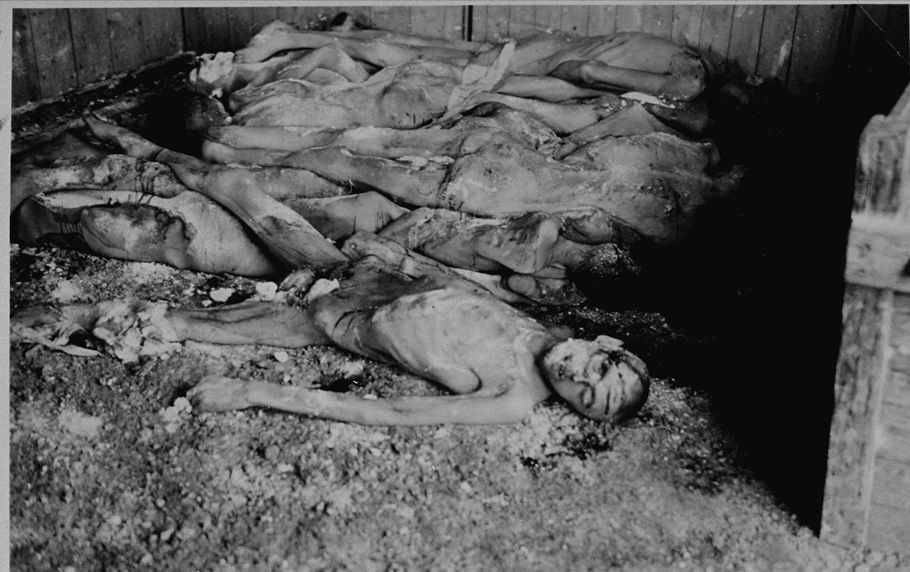The corpses of prisoners stacked in a shed.