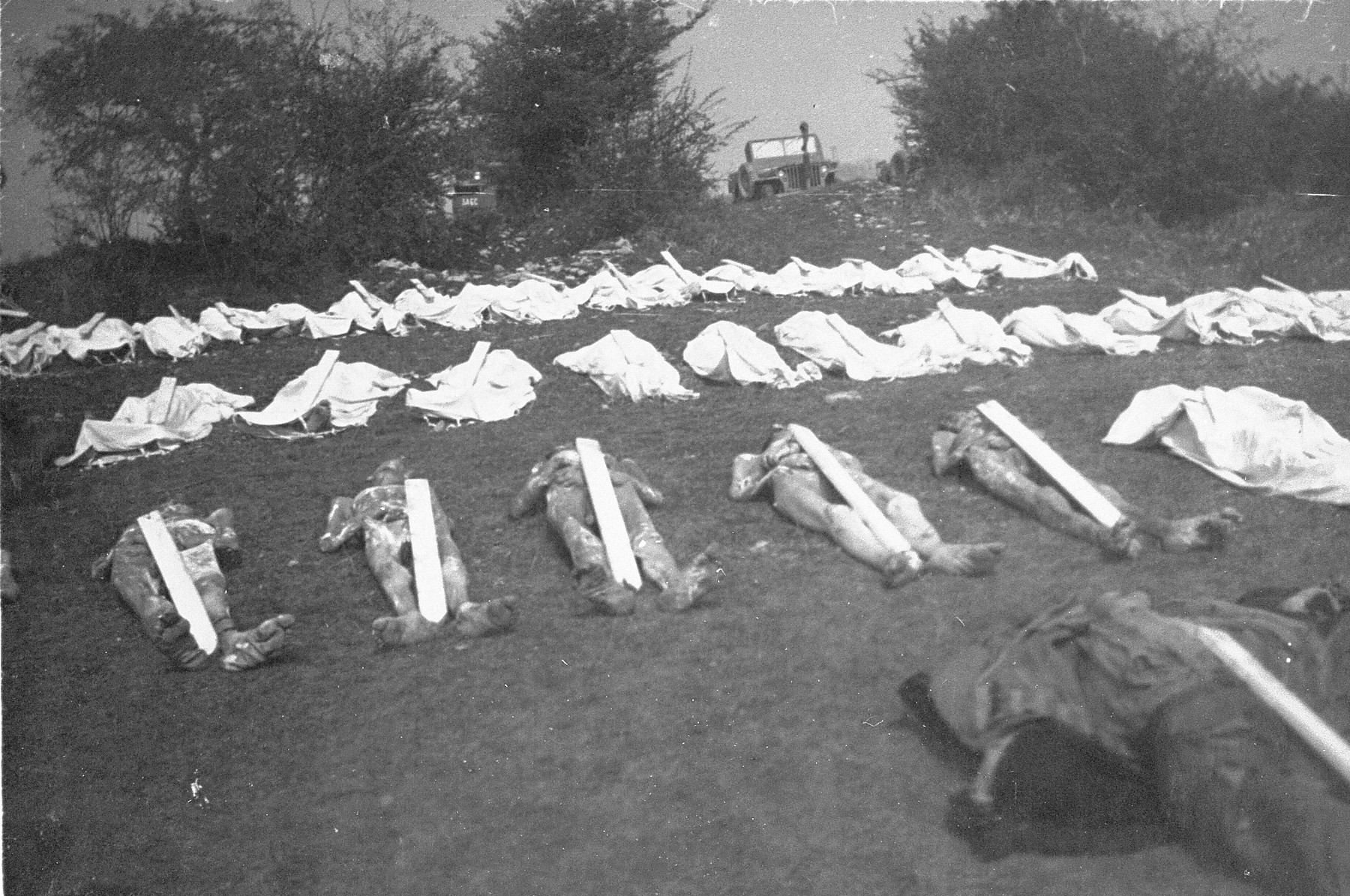Corpses laid out in preparation for burial.  Each one was assigned a numbered marker.