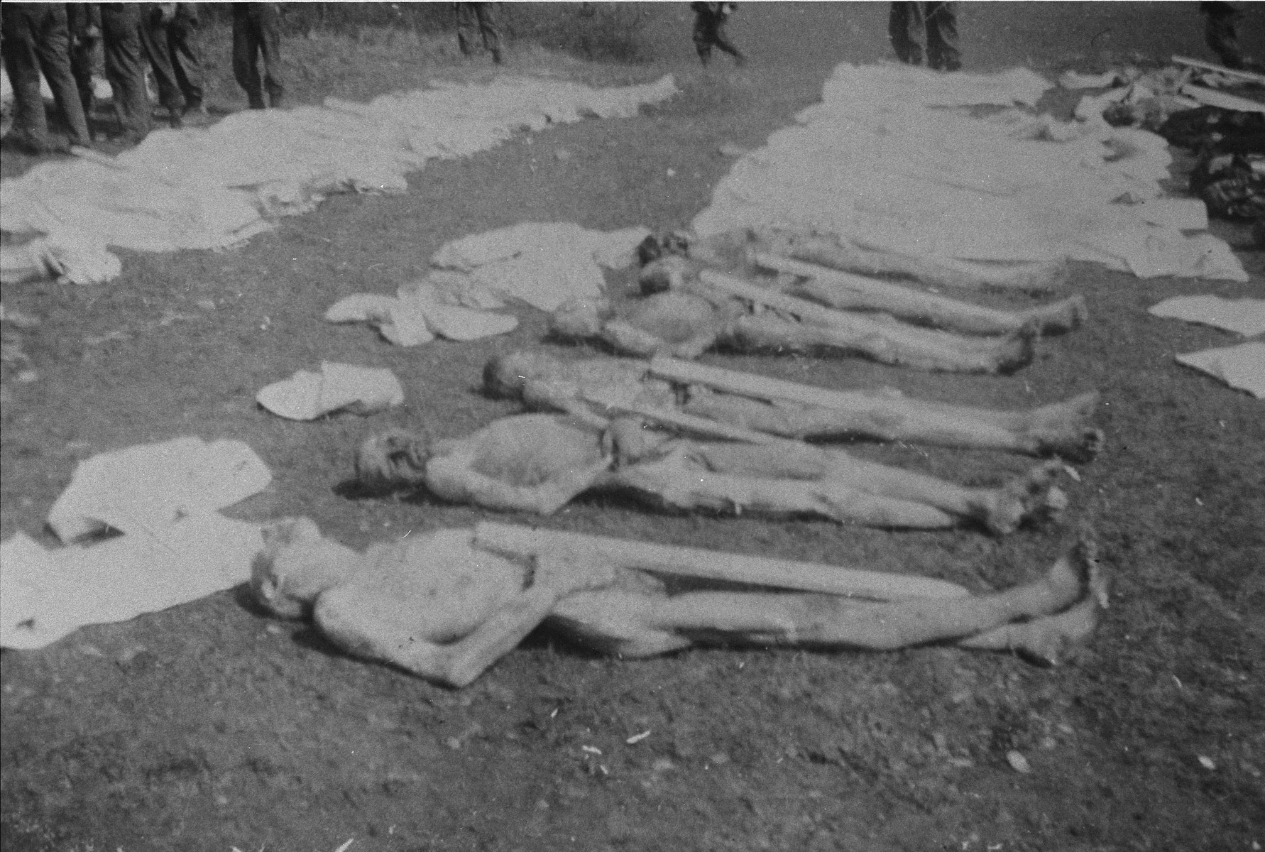 Prisoners' corpses awaiting burial.  Each corpse has been assigned a numbered grave marker.