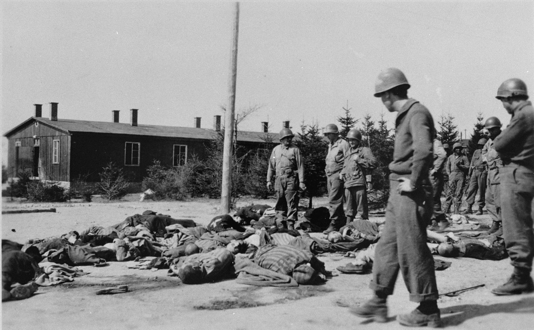 American soldiers view the bodies of prisoners that lie strewn along the road in the newly liberated Ohrdruf concentration camp.