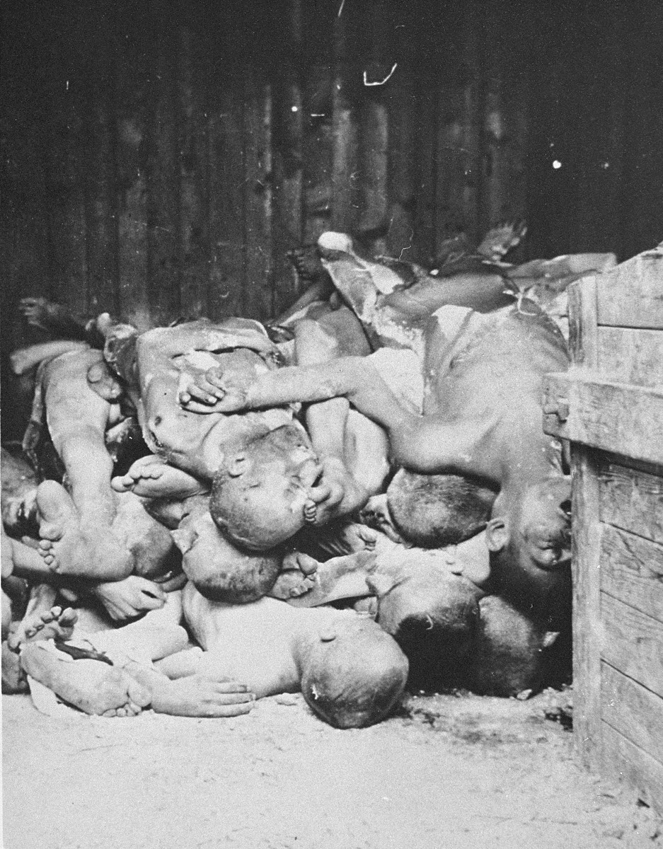 The corpses of murdered prisoners found, by American liberators, in the entrance to a shed.