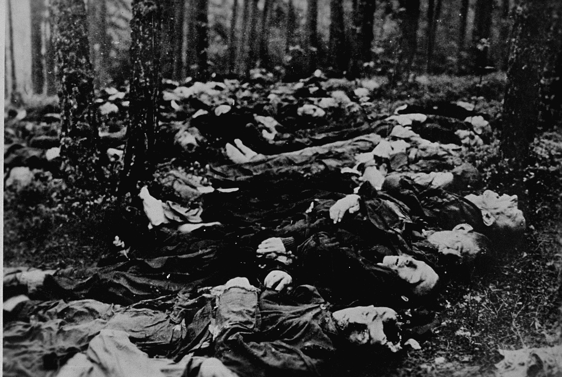 Corpses, some of which had lain unburied for weeks, prepared for burial by German civilians.