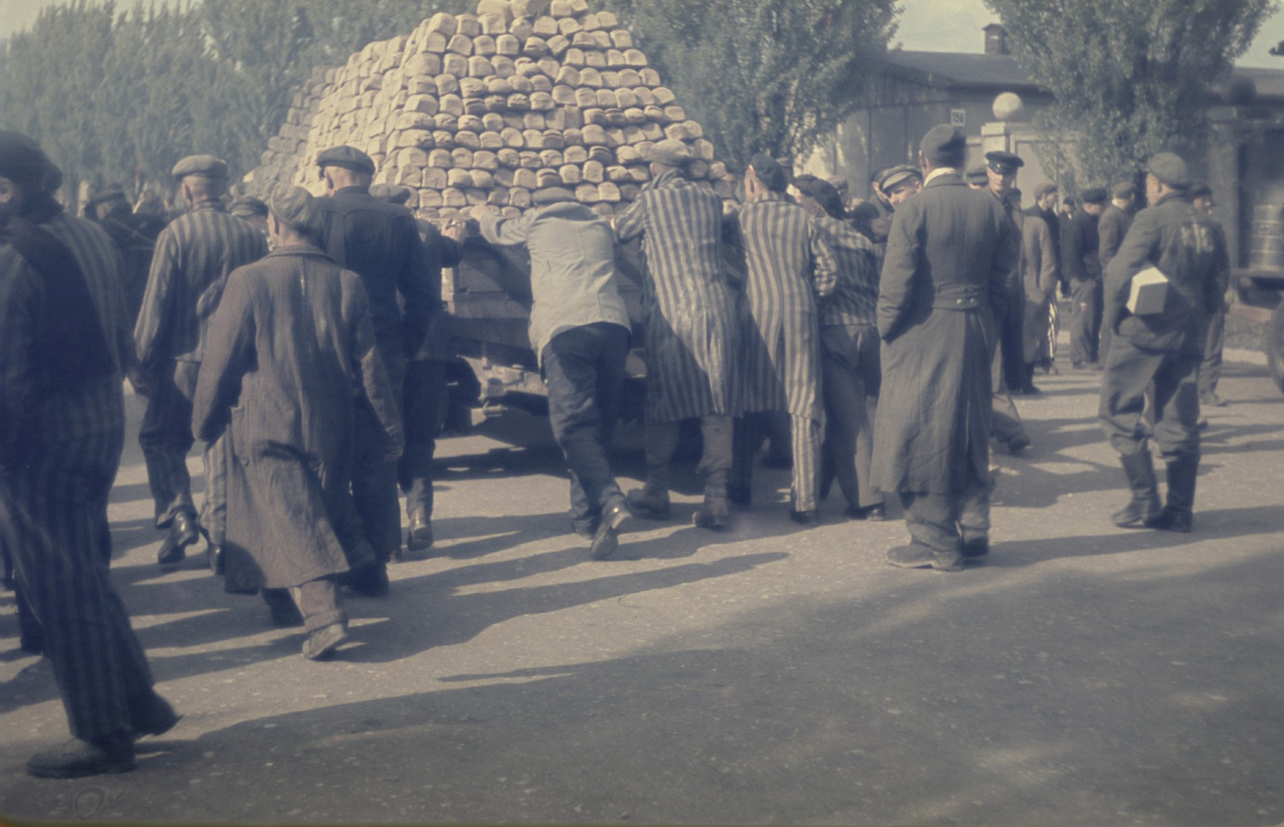 Survivors push a wagon piled high with loaves of bread in the newly liberated Dachau concentration camp.