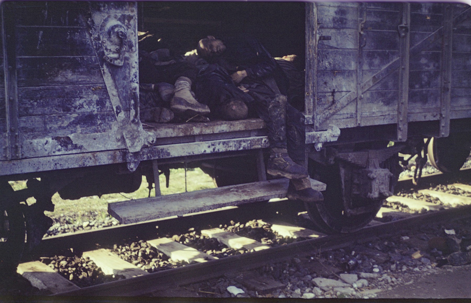 Corpses of prisoners lie in a boxcar of the Dachau death train.