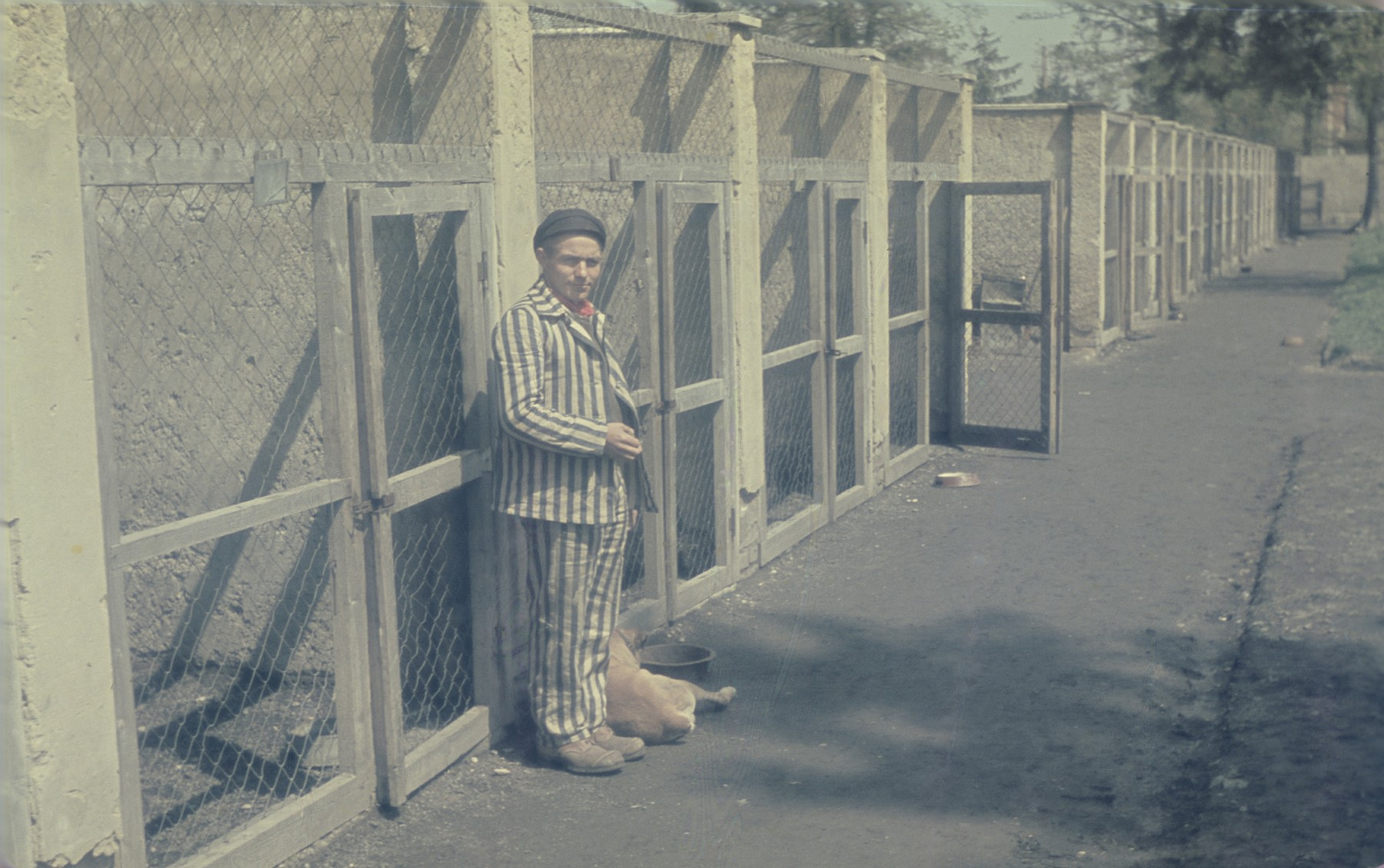 A former prisoner poses in front of the dog kennels in the newly liberated Dachau concentration camp.