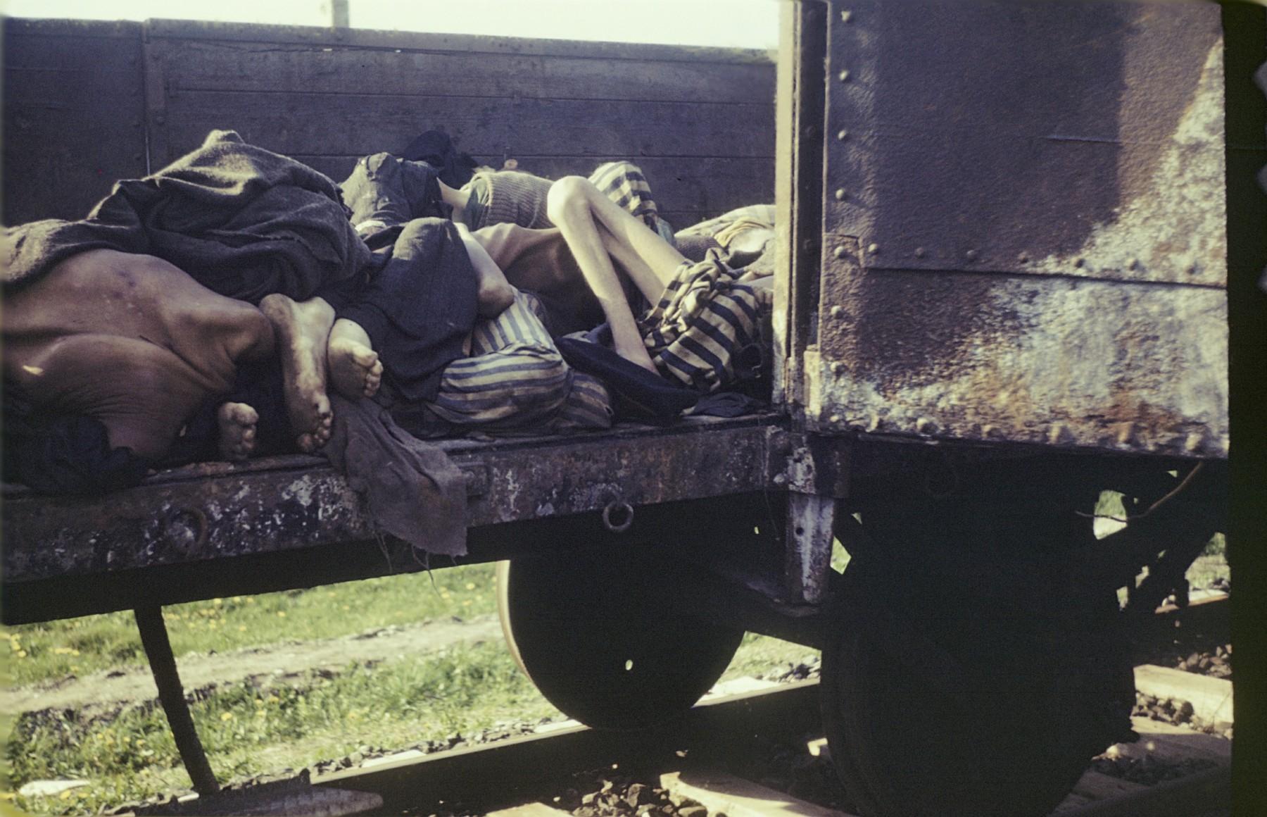 Corpses lie in an open railcar of the Dachau death train.