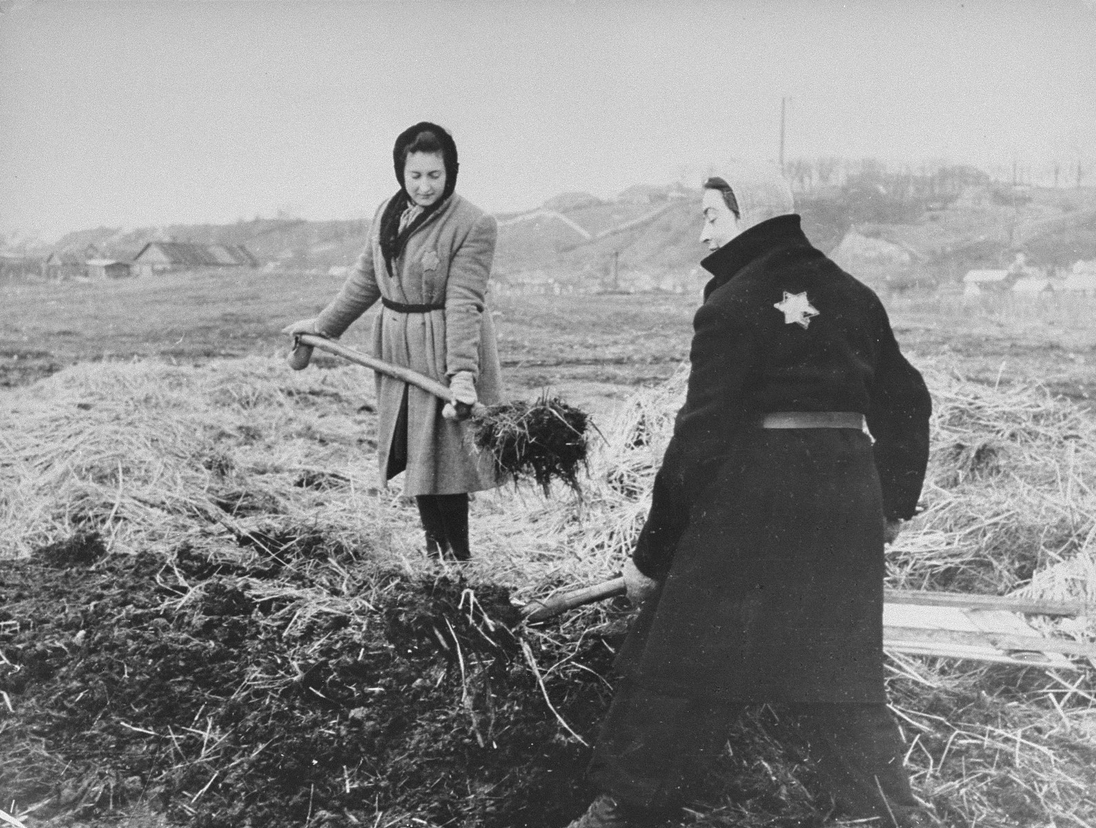 Two women work on a large agricultural plot in the Kovno ghetto.