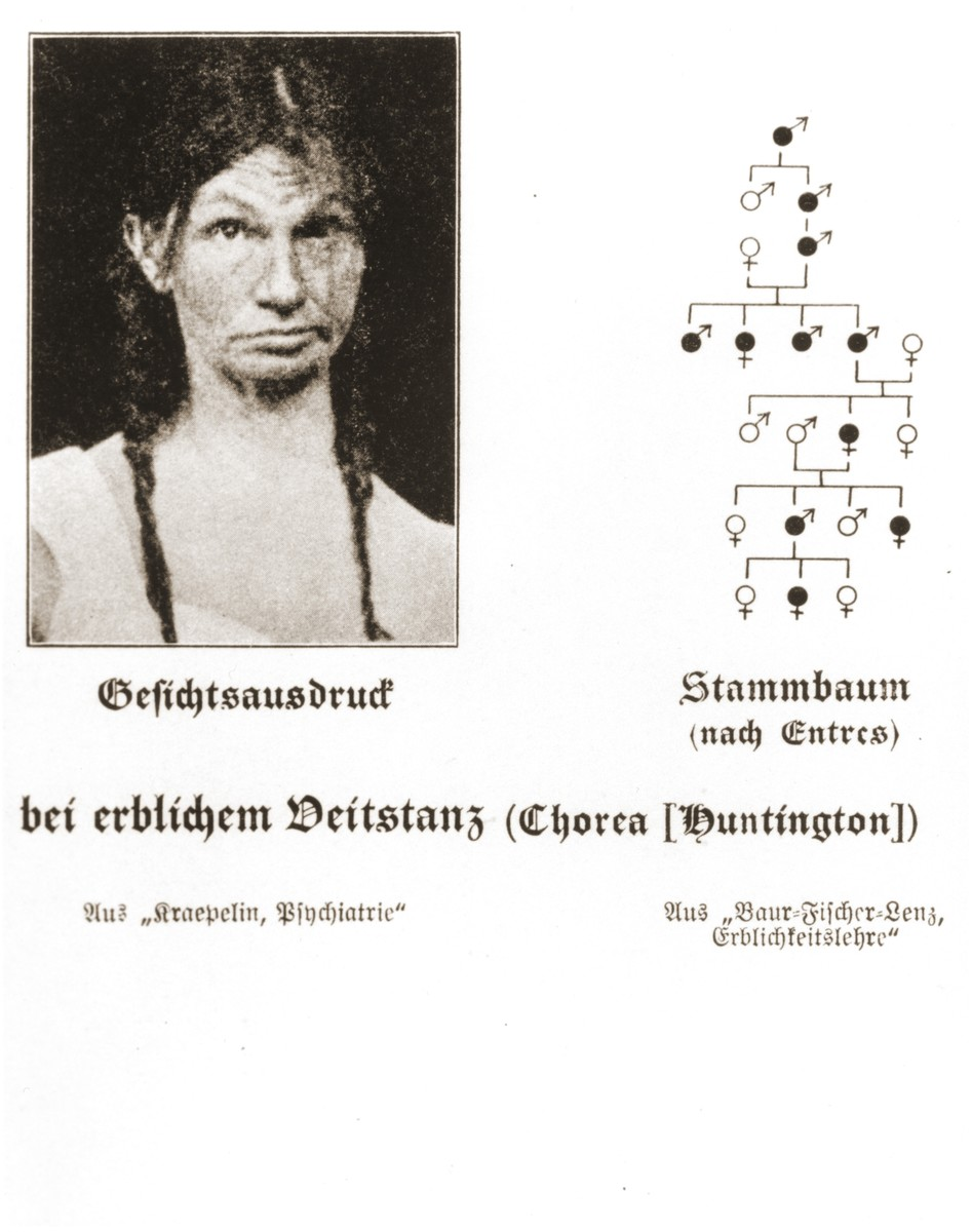 Family tree illustrating the transmission of Huntington's Chorea through seven generations of a family.