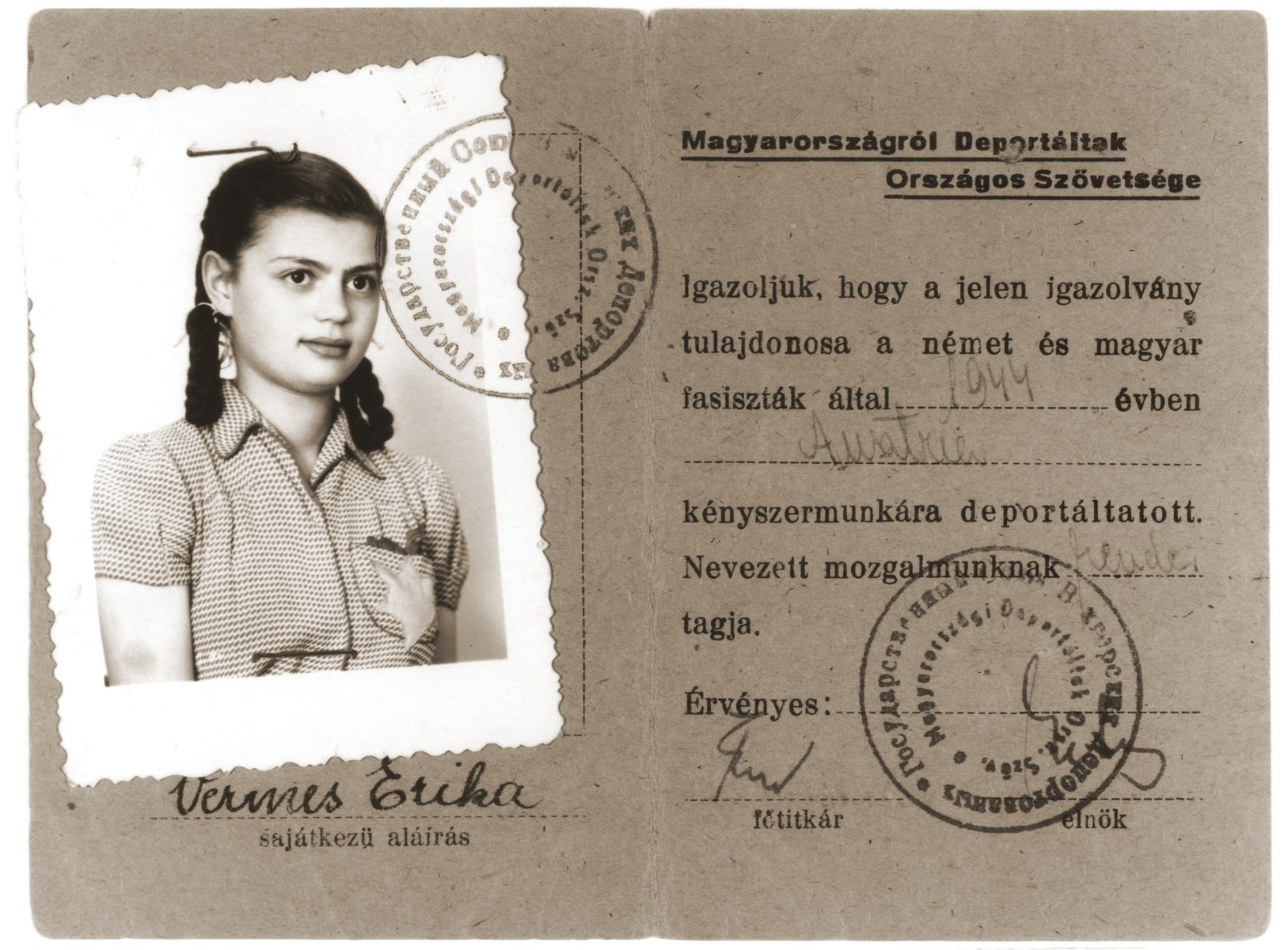 Postwar identification card certifying that Erika Vermes is a member of the National Alliance of People Deported from Hungary.  The photograph that is stapled to the card was taken in 1944 and shows Erika wearing the yellow star.  The ID card, which bears both Hungarian and Russian stamps, states that Erika Vermes was deported to Austria in 1944 by German and Hungarian fascists to perform forced labor.  Erika, in fact, was never deported to Austria.  She appropriated her mother's story in order to qualify for food rations.
