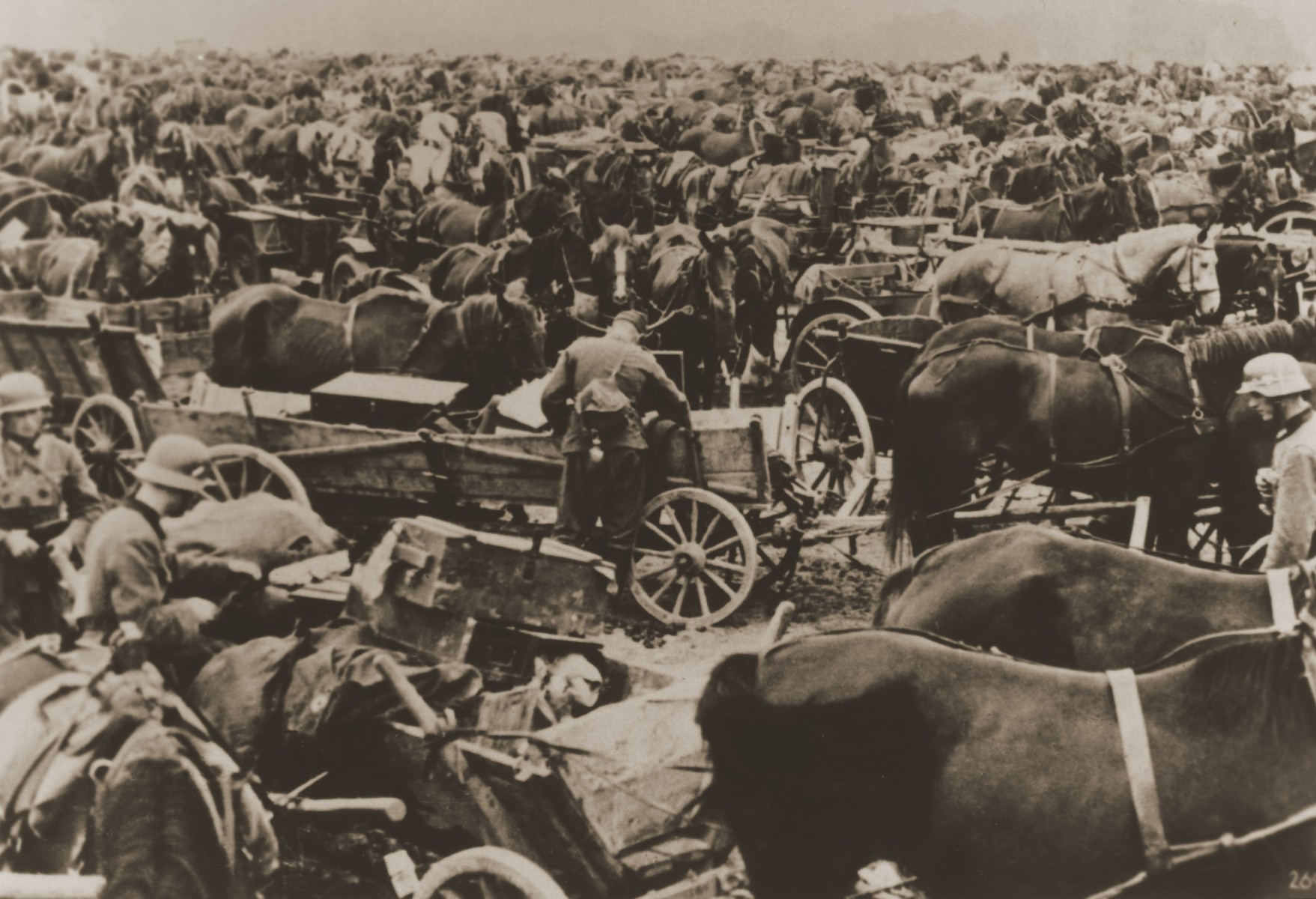 German soldiers stand among a vast assembly of horse-drawn wagons during the invasion of Poland.