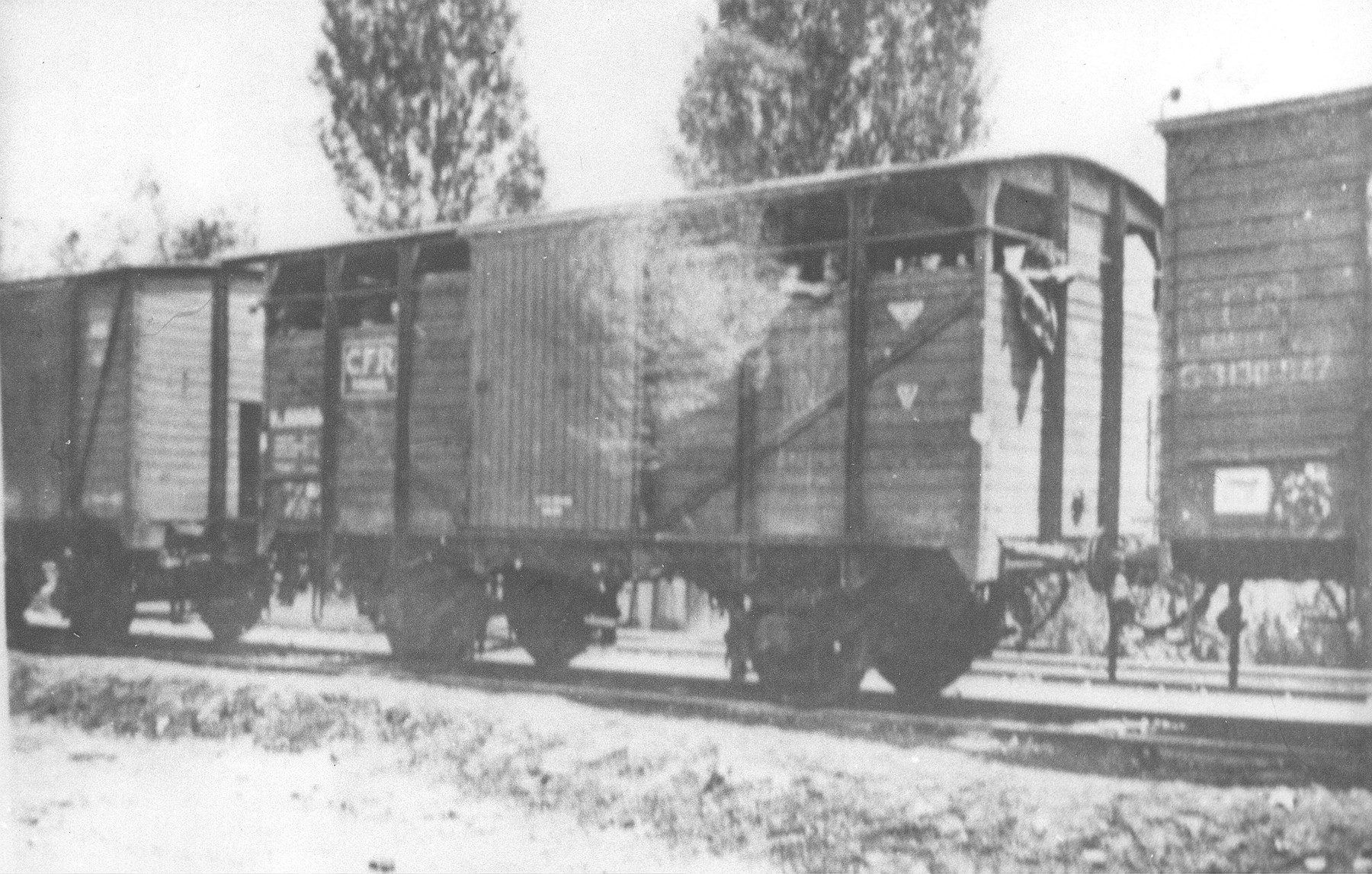 The Iasi-Calarasi death train at the railroad station in Targu-Frumos.  At Targu-Frumos the command of the train guard was taken over by 2nd Lt. Aurel Triandaf, assisted by Sgt. Maj. Anastase Bratu.