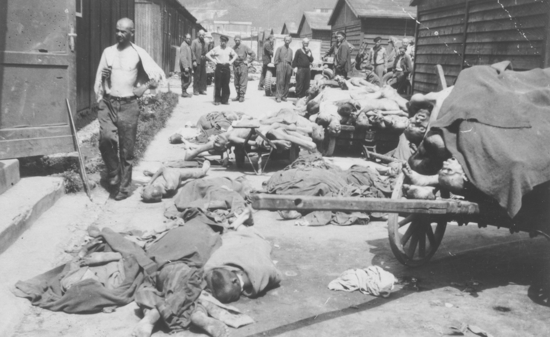 Survivors view corpses that have been piled up on carts and on the ground prior to their burial [probably at the Gusen concentration camp].